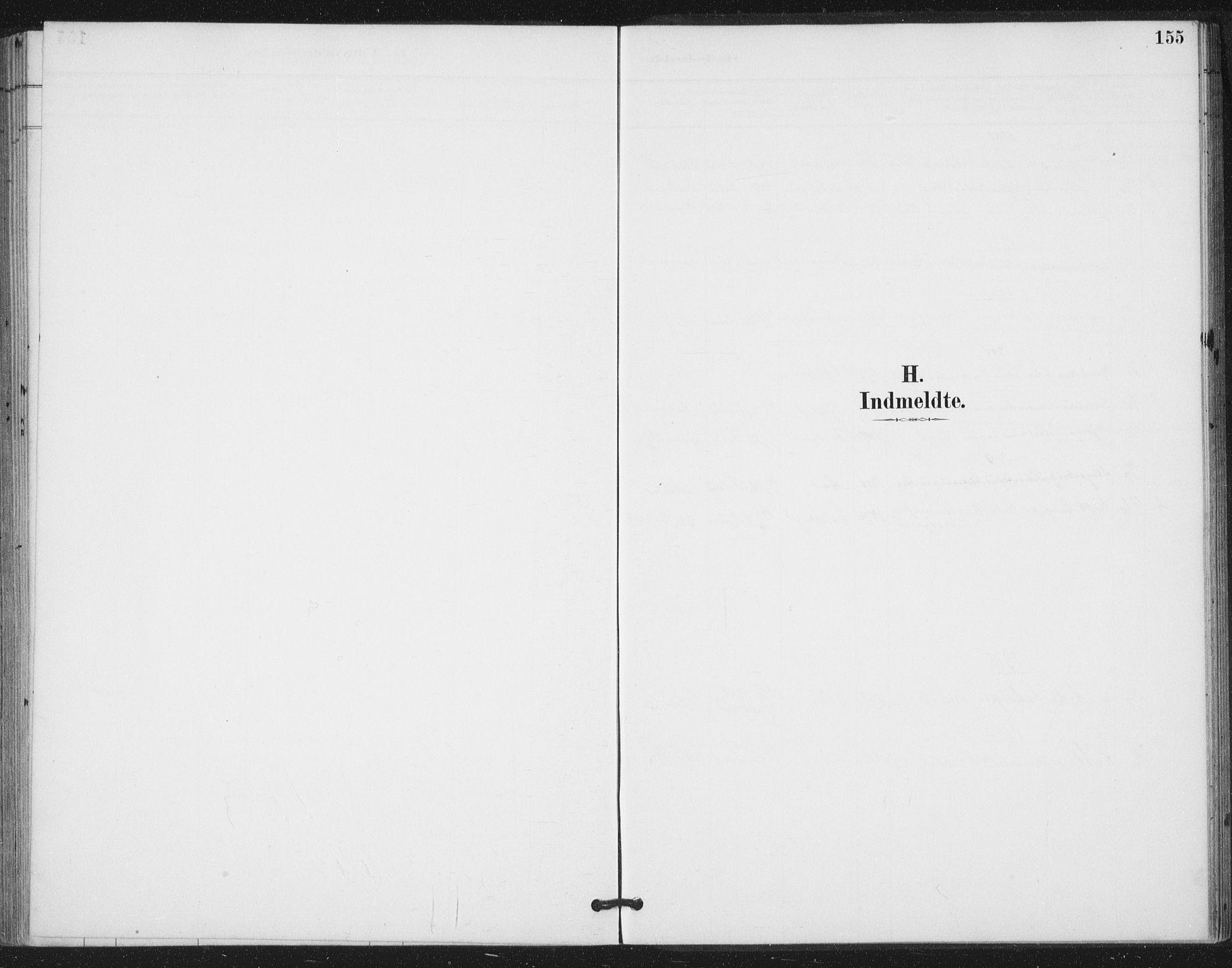 SAT, Ministerialprotokoller, klokkerbøker og fødselsregistre - Nord-Trøndelag, 783/L0660: Ministerialbok nr. 783A02, 1886-1918, s. 155