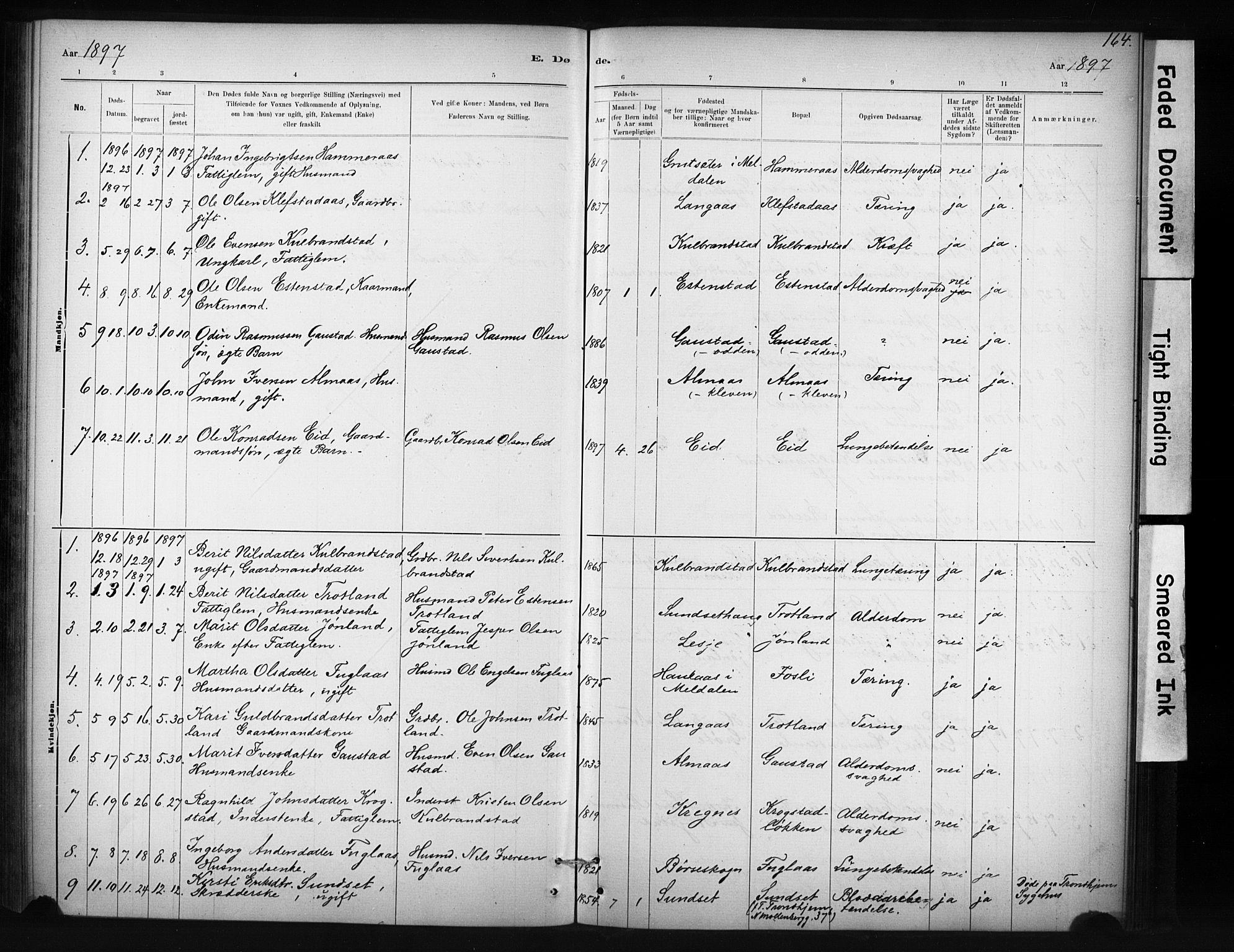 SAT, Ministerialprotokoller, klokkerbøker og fødselsregistre - Sør-Trøndelag, 694/L1127: Ministerialbok nr. 694A01, 1887-1905, s. 164