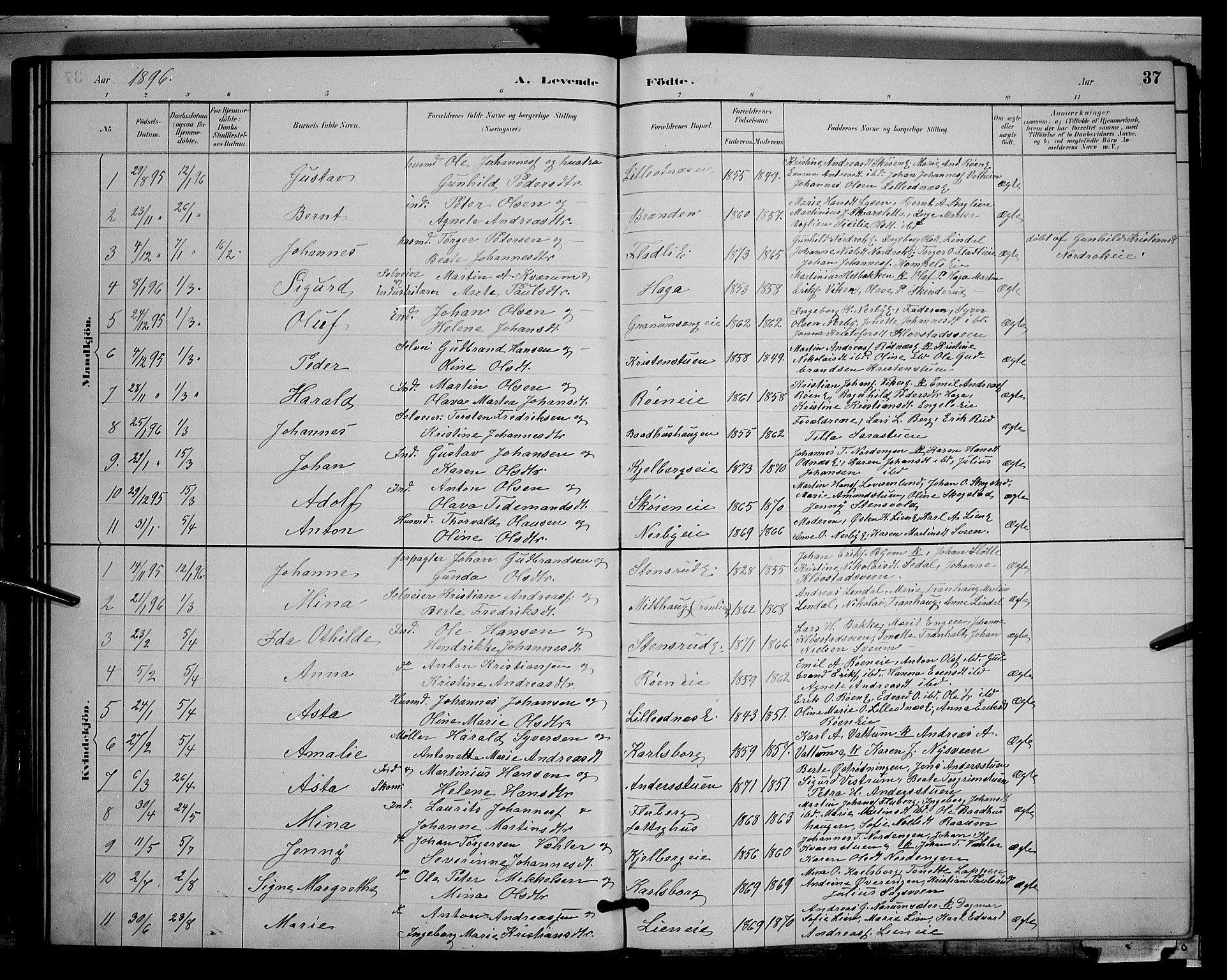 SAH, Søndre Land prestekontor, L/L0003: Klokkerbok nr. 3, 1884-1902, s. 37