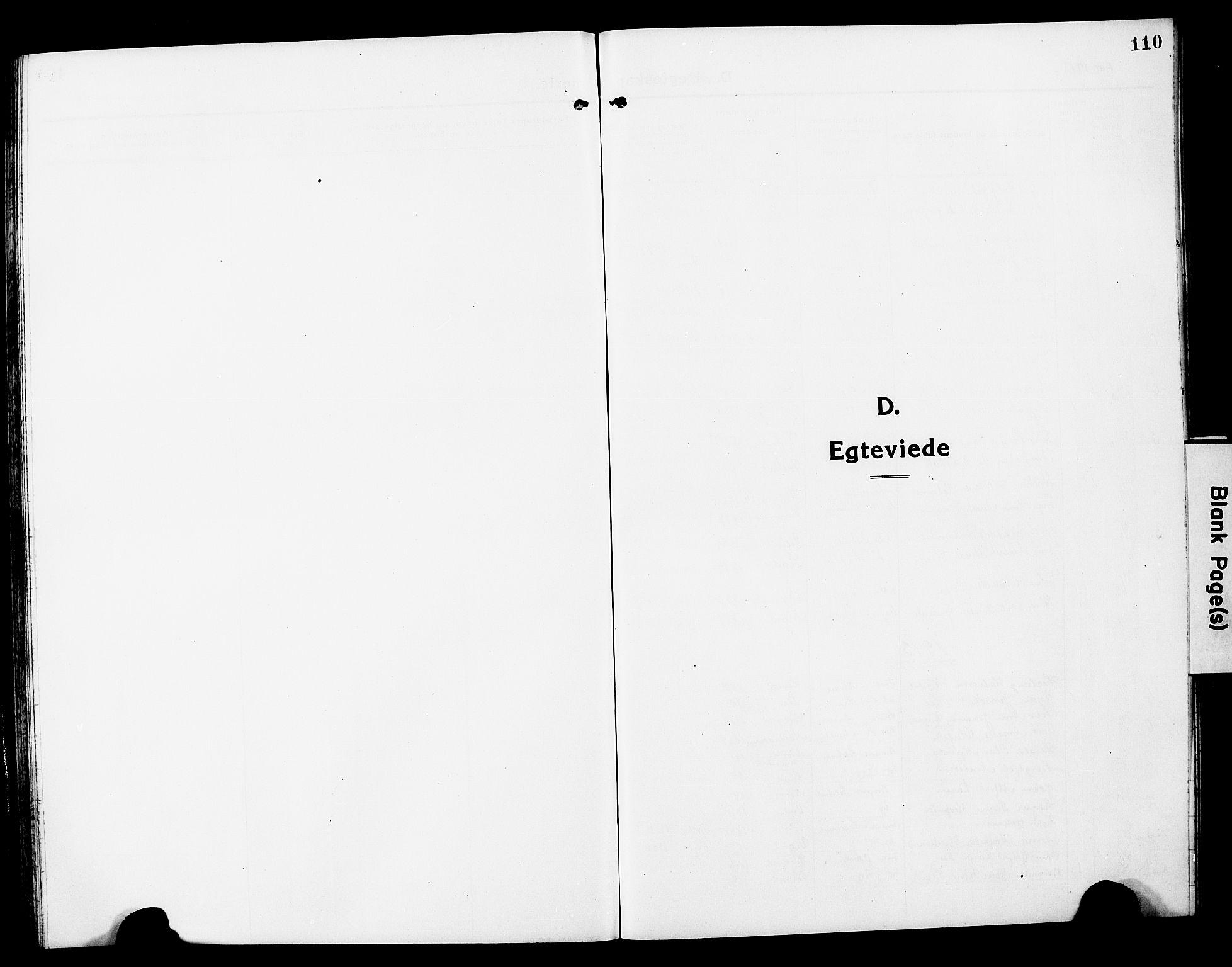 SAT, Ministerialprotokoller, klokkerbøker og fødselsregistre - Nord-Trøndelag, 780/L0653: Klokkerbok nr. 780C05, 1911-1927, s. 110