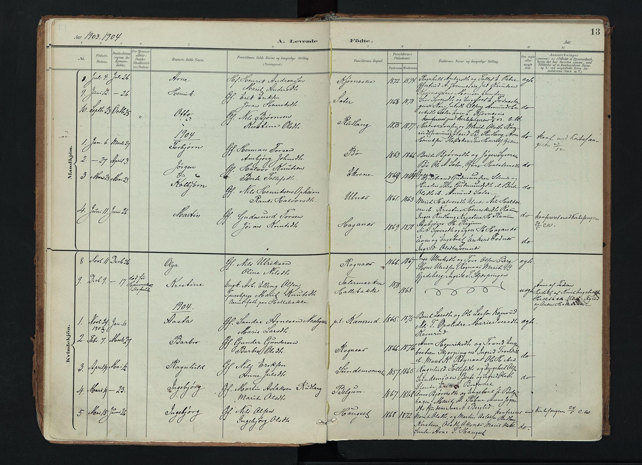 SAH, Nord-Aurdal prestekontor, Ministerialbok nr. 17, 1897-1926, s. 13
