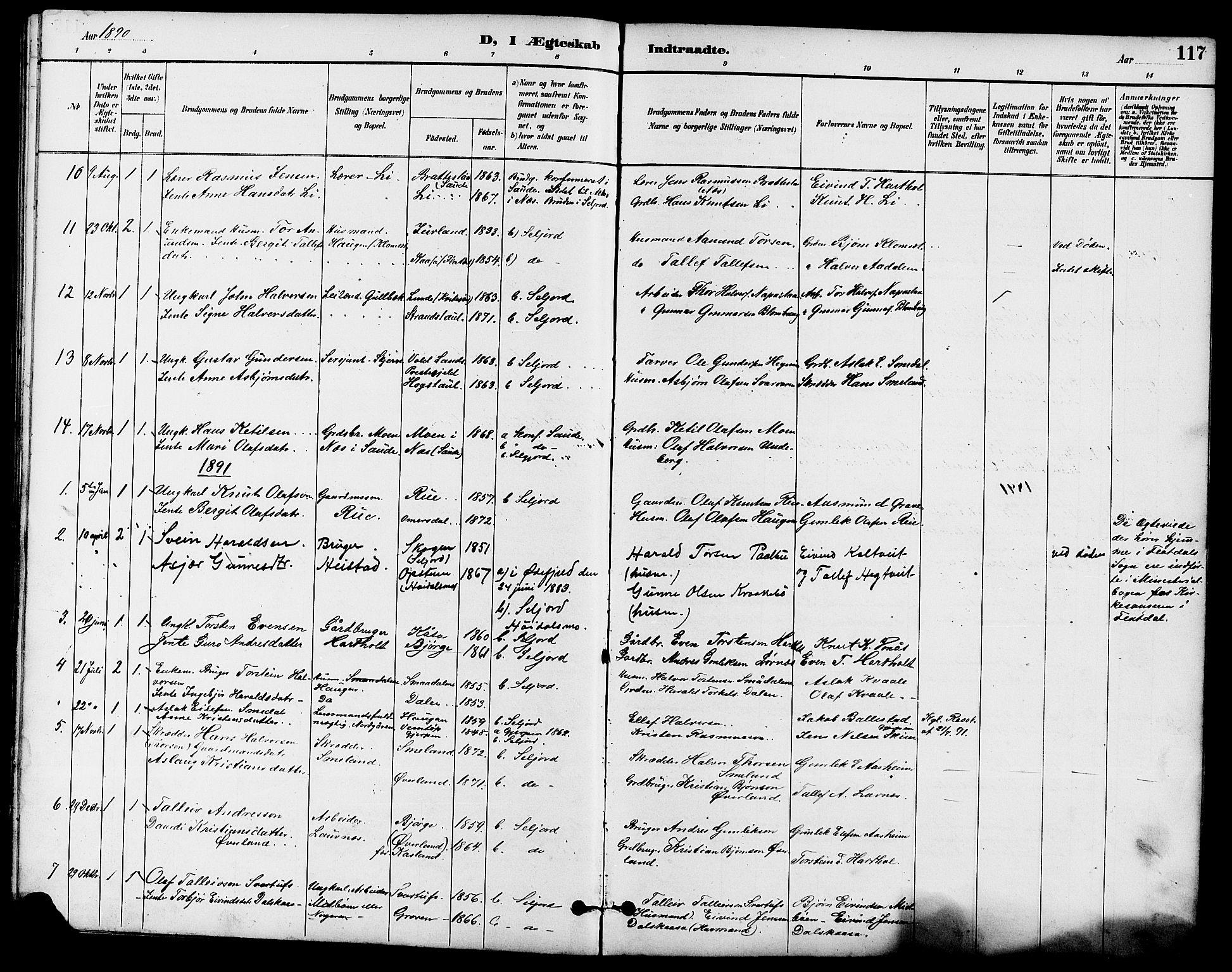 SAKO, Seljord kirkebøker, G/Ga/L0005: Klokkerbok nr. I 5, 1887-1914, s. 117