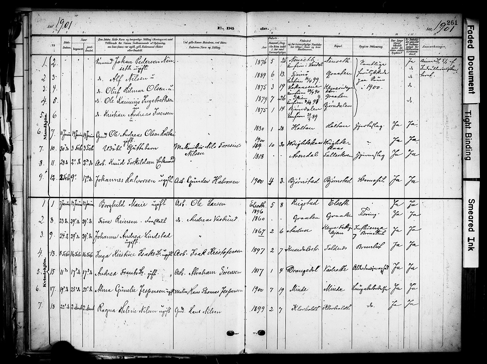 SAKO, Solum kirkebøker, F/Fa/L0011: Ministerialbok nr. I 11, 1898-1909, s. 261