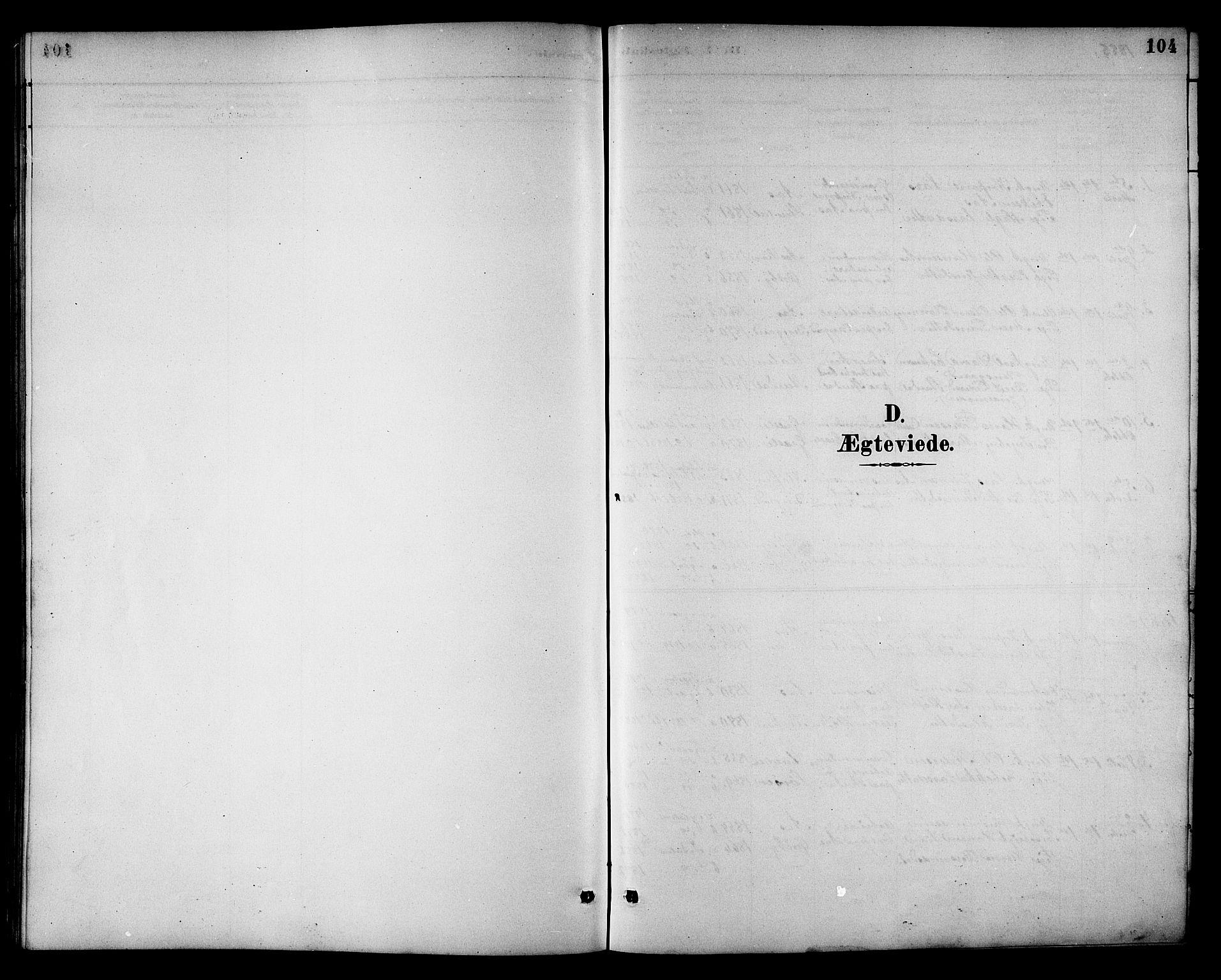SAT, Ministerialprotokoller, klokkerbøker og fødselsregistre - Sør-Trøndelag, 698/L1167: Klokkerbok nr. 698C04, 1888-1907, s. 104