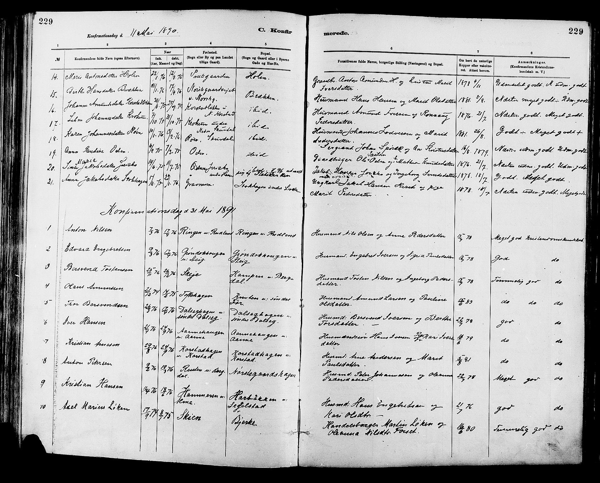 SAH, Sør-Fron prestekontor, H/Ha/Haa/L0003: Ministerialbok nr. 3, 1881-1897, s. 229