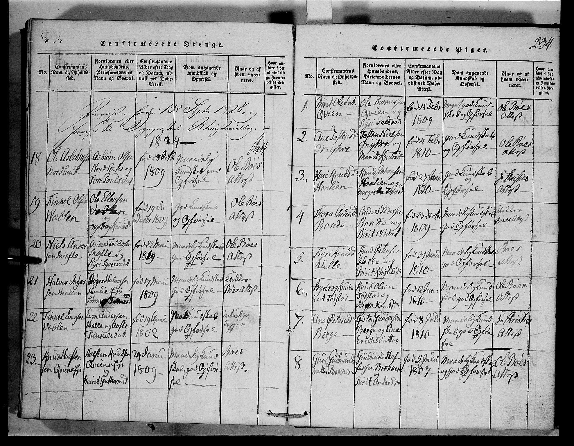 SAH, Vang prestekontor, Valdres, Klokkerbok nr. 1, 1814-1820, s. 234