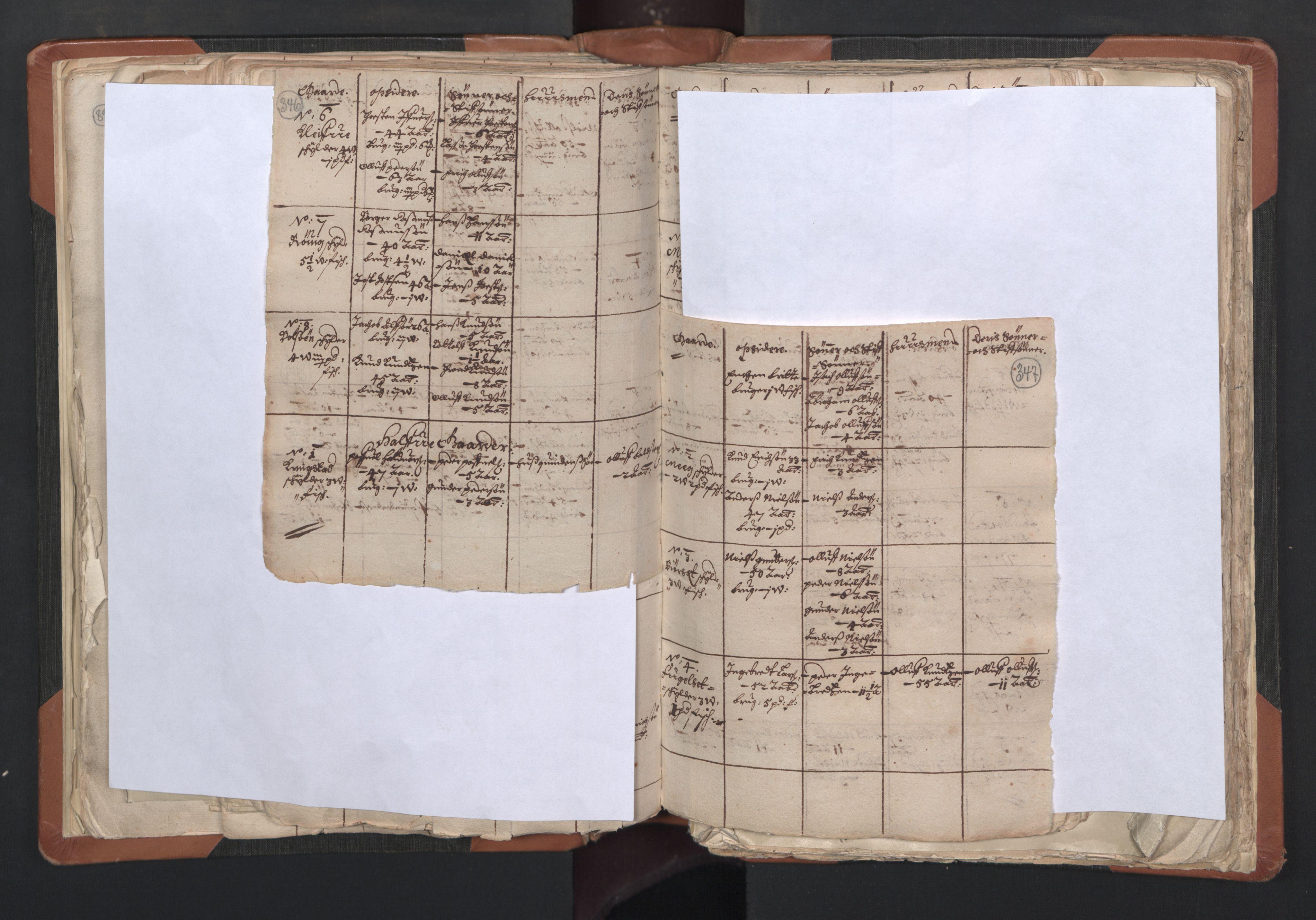 RA, Sogneprestenes manntall 1664-1666, nr. 27: Romsdal prosti, 1664-1666, s. 346-347