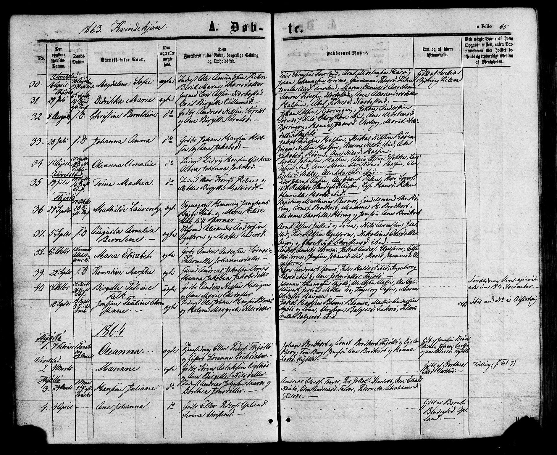 SAT, Ministerialprotokoller, klokkerbøker og fødselsregistre - Nordland, 817/L0262: Ministerialbok nr. 817A03/ 1, 1862-1877, s. 65