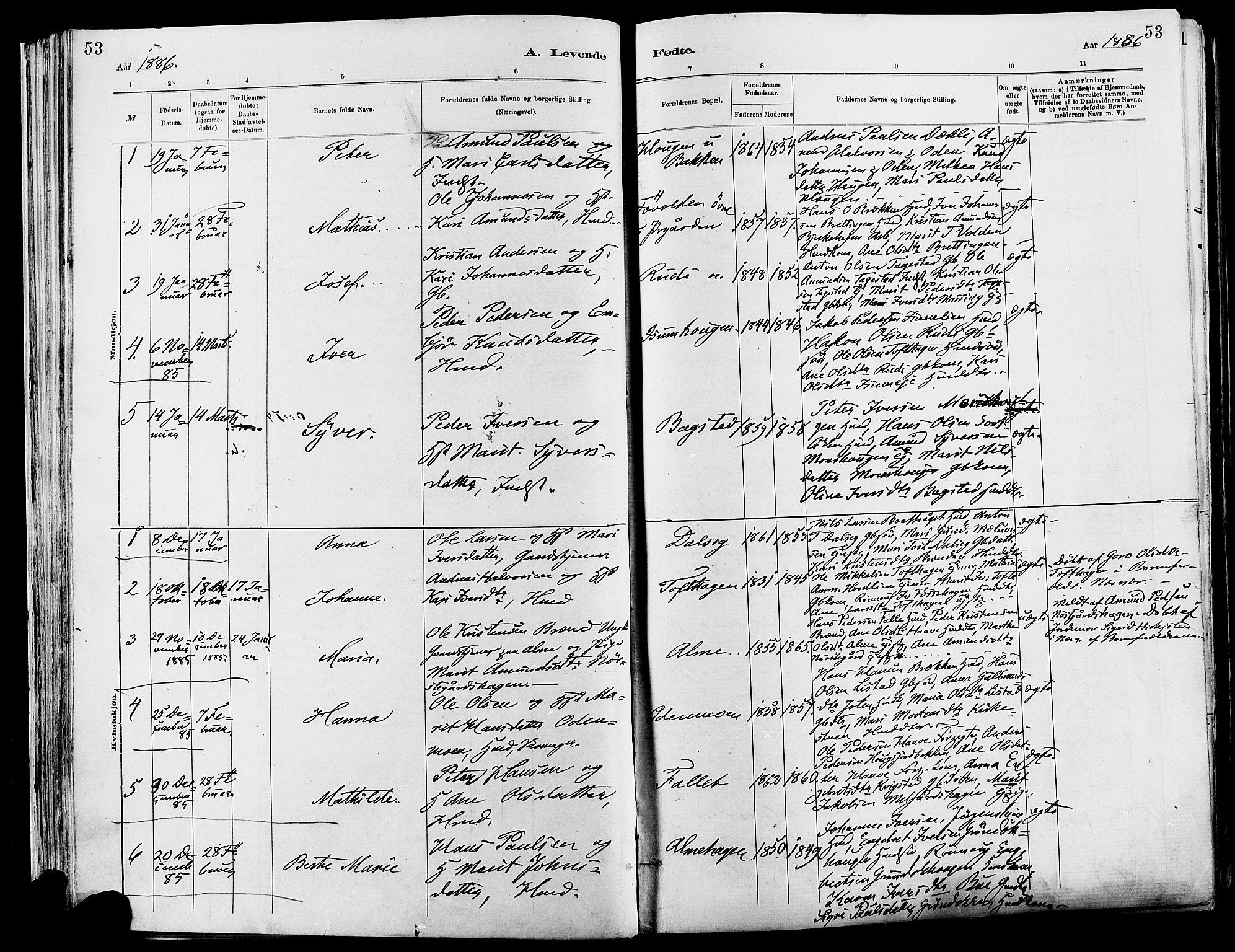SAH, Sør-Fron prestekontor, H/Ha/Haa/L0003: Ministerialbok nr. 3, 1881-1897, s. 53