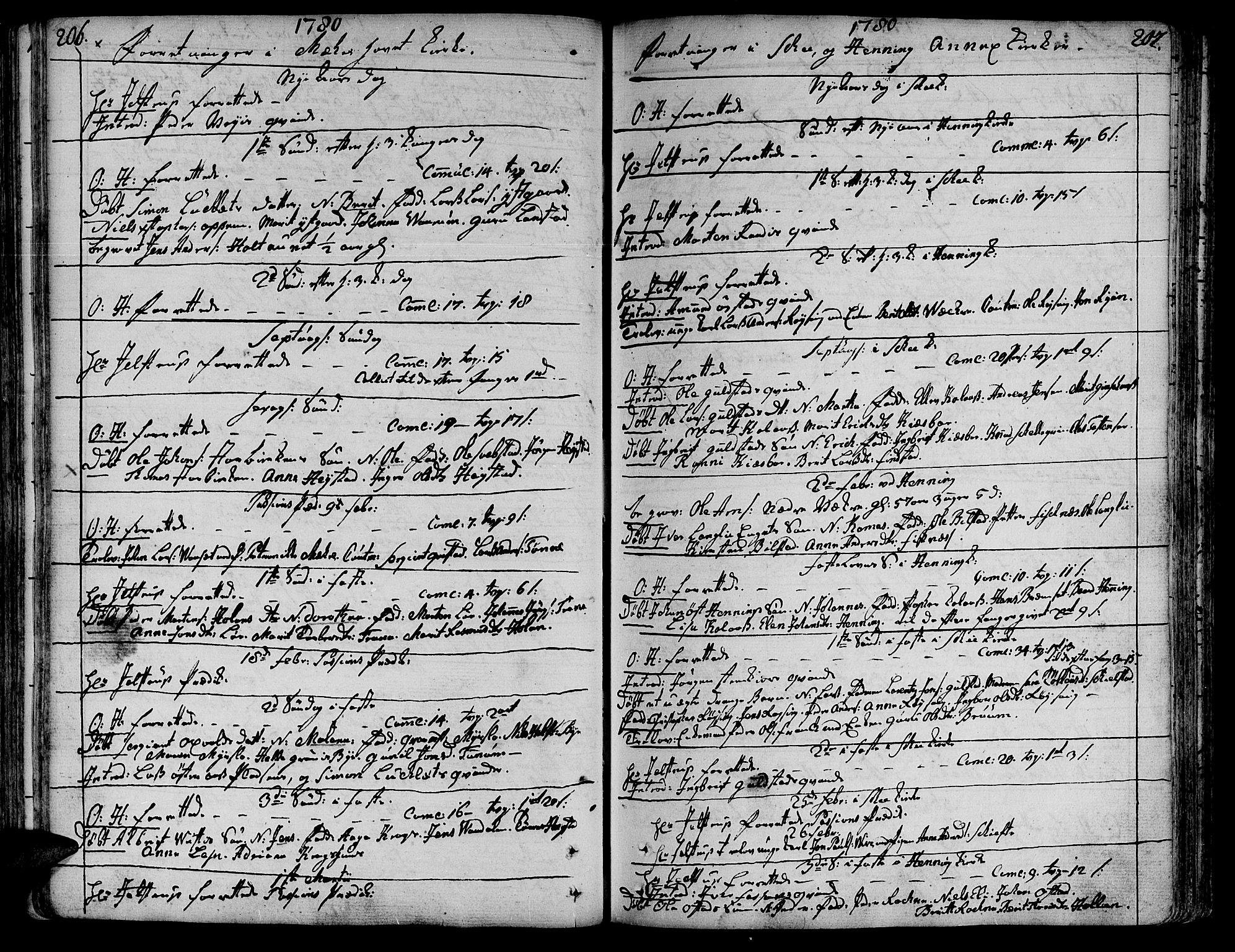 SAT, Ministerialprotokoller, klokkerbøker og fødselsregistre - Nord-Trøndelag, 735/L0331: Ministerialbok nr. 735A02, 1762-1794, s. 206-207