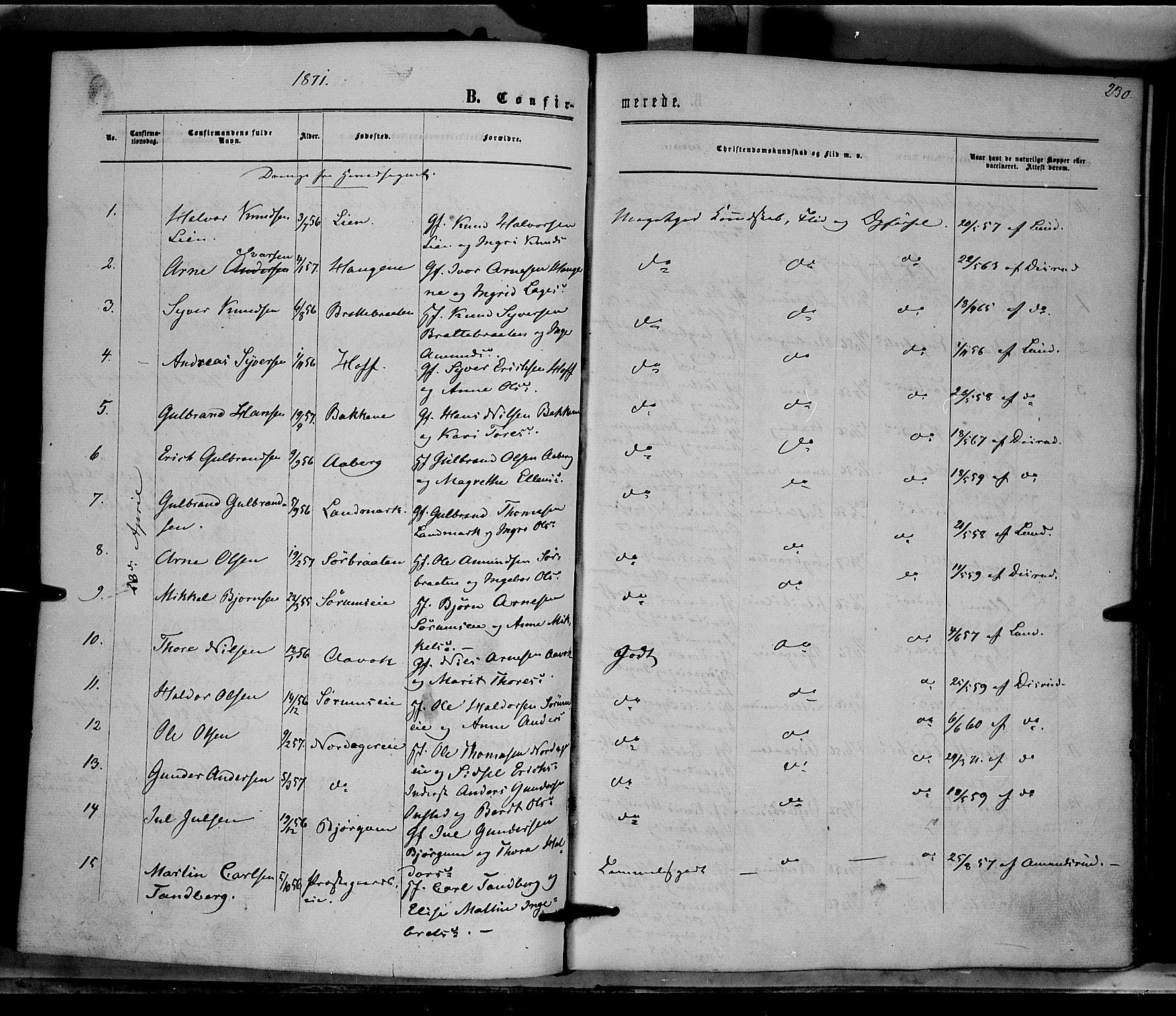 SAH, Nord-Aurdal prestekontor, Ministerialbok nr. 8, 1863-1875, s. 230