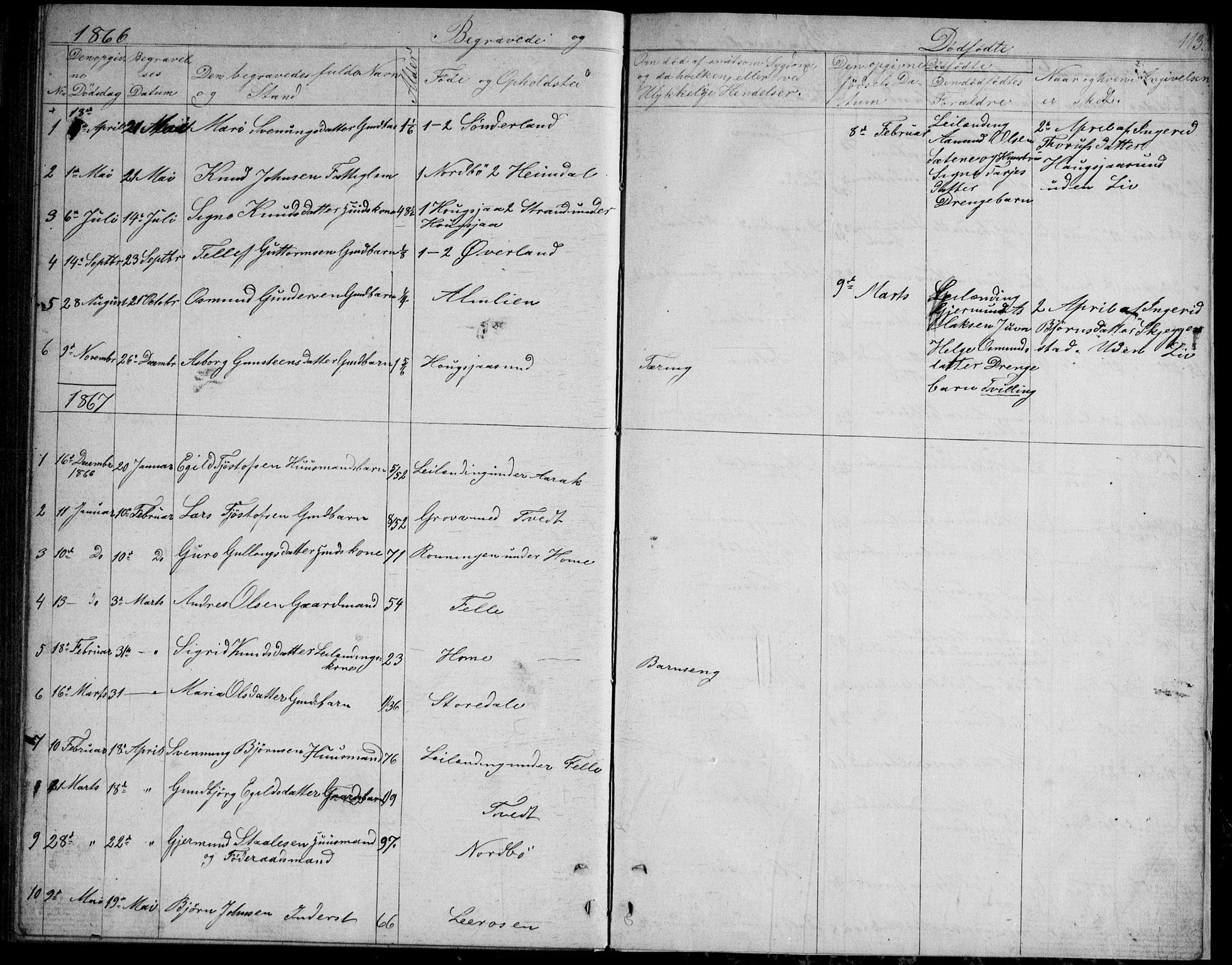 SAKO, Nissedal kirkebøker, G/Gb/L0002: Klokkerbok nr. II 2, 1863-1892, s. 113