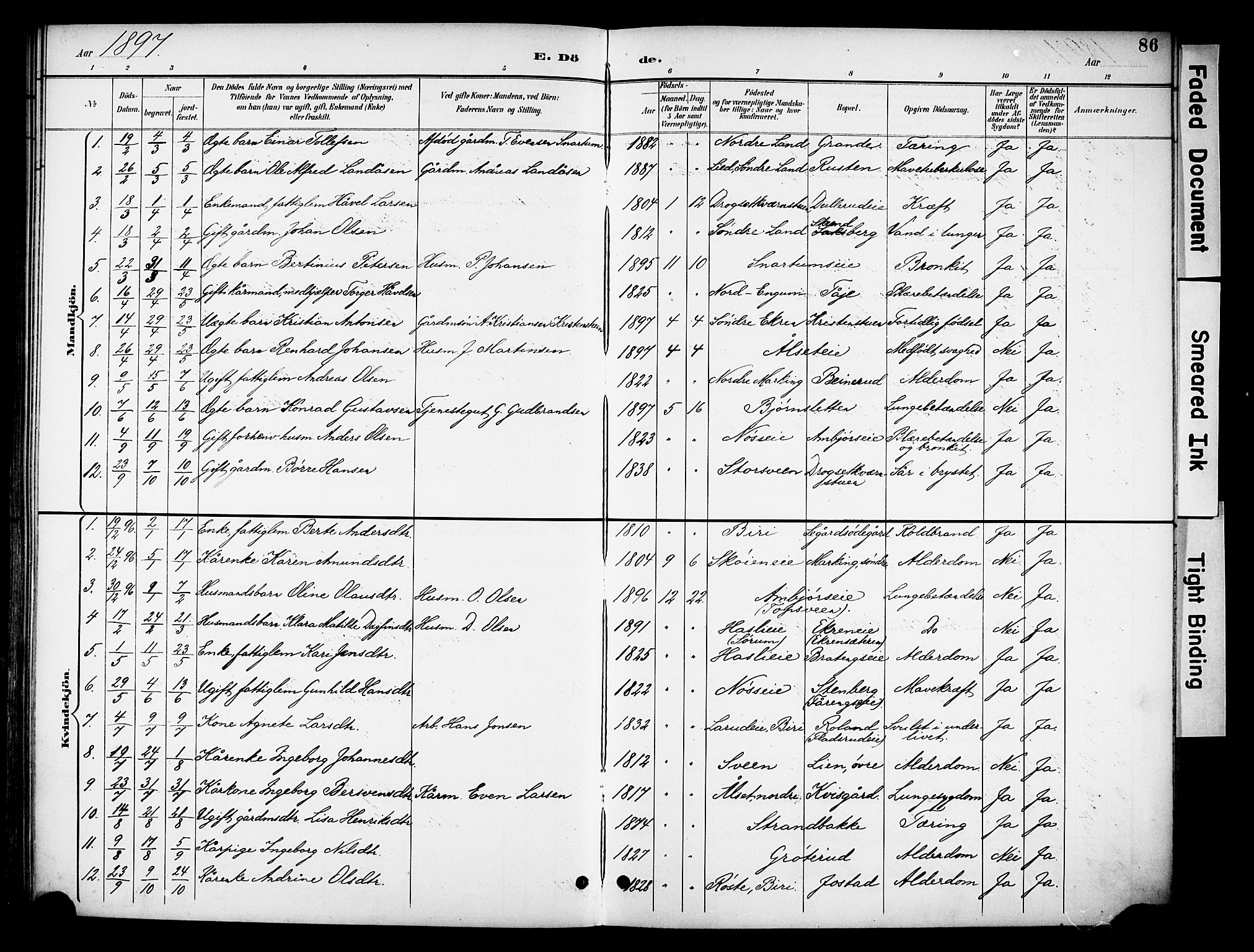 SAH, Biri prestekontor, Ministerialbok nr. 8, 1894-1901, s. 86