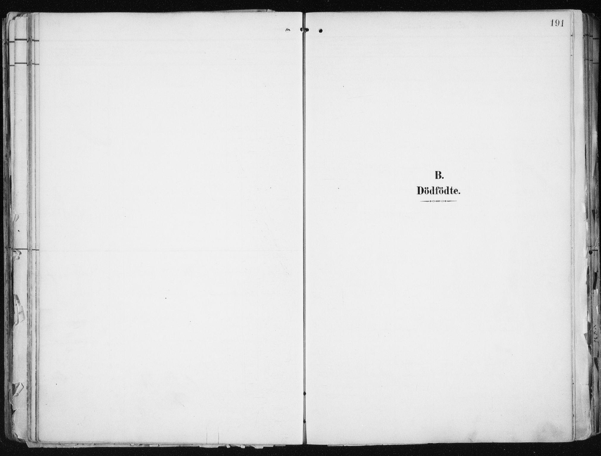 SATØ, Tromsø sokneprestkontor/stiftsprosti/domprosti, G/Ga/L0015kirke: Ministerialbok nr. 15, 1889-1899, s. 191