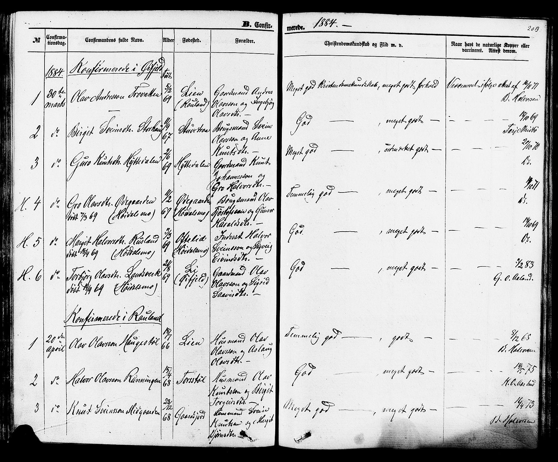 SAKO, Rauland kirkebøker, F/Fa/L0003: Ministerialbok nr. 3, 1859-1886, s. 203