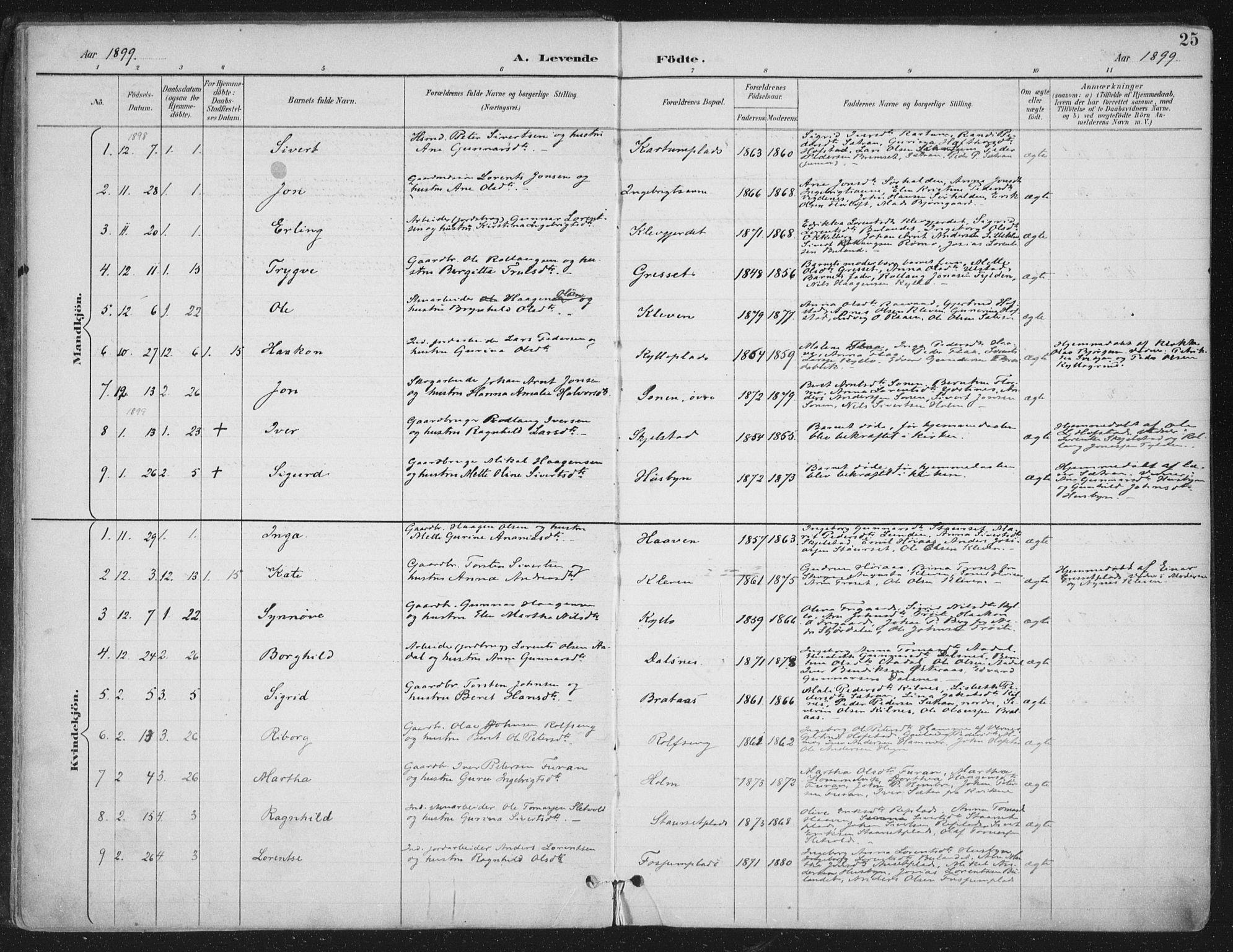 SAT, Ministerialprotokoller, klokkerbøker og fødselsregistre - Nord-Trøndelag, 703/L0031: Ministerialbok nr. 703A04, 1893-1914, s. 25