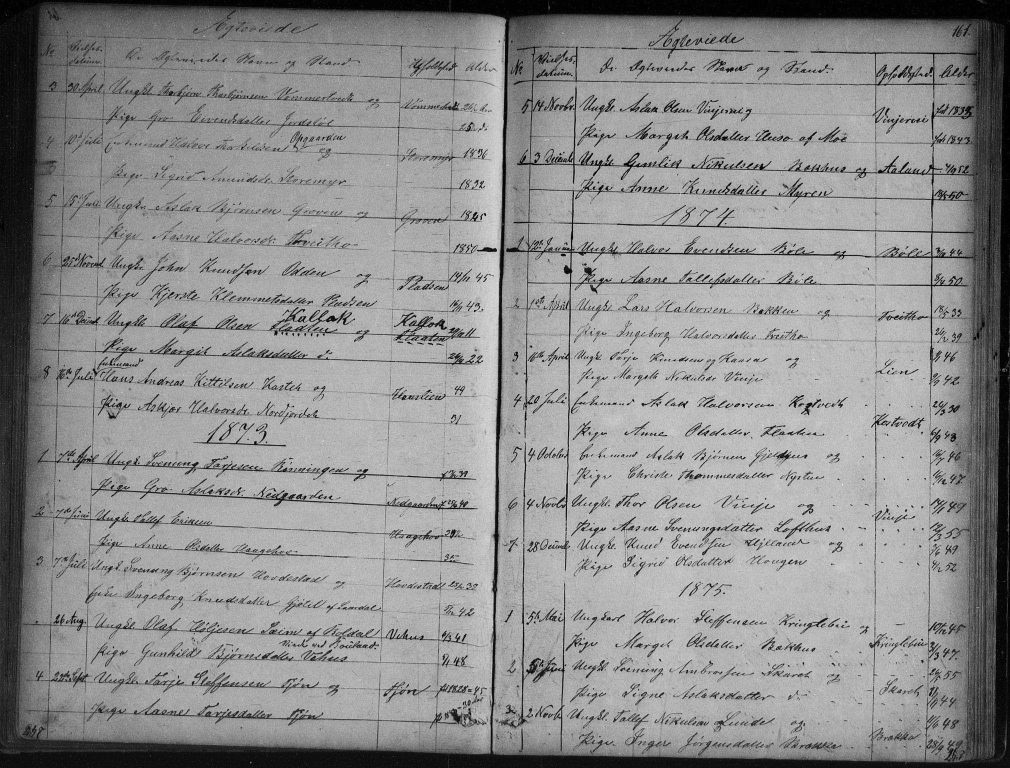 SAKO, Vinje kirkebøker, G/Ga/L0002: Klokkerbok nr. I 2, 1849-1893, s. 161