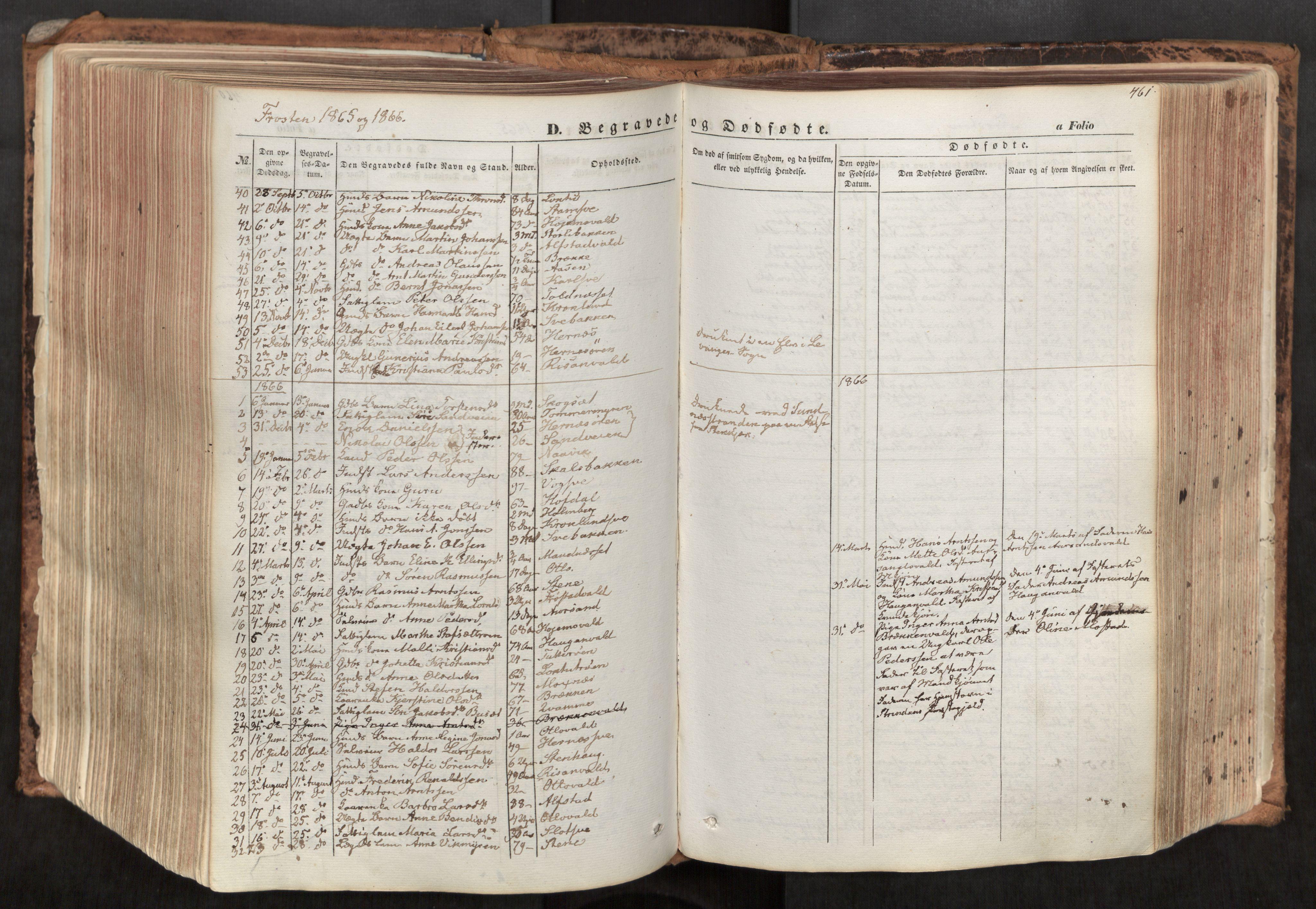 SAT, Ministerialprotokoller, klokkerbøker og fødselsregistre - Nord-Trøndelag, 713/L0116: Ministerialbok nr. 713A07, 1850-1877, s. 461