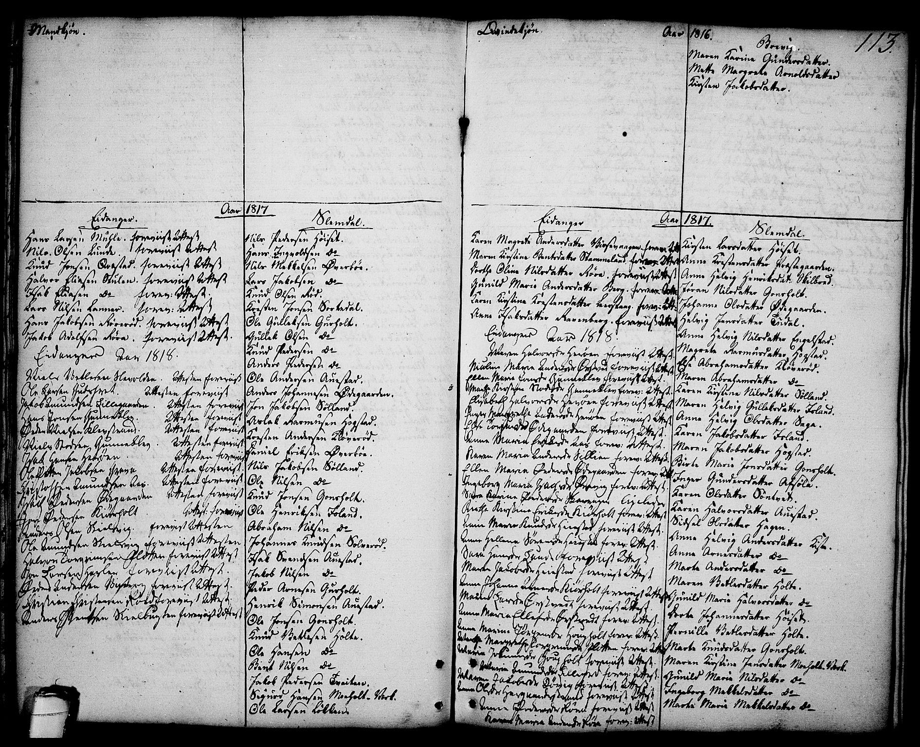 SAKO, Brevik kirkebøker, F/Fa/L0003: Ministerialbok nr. 3, 1764-1814, s. 113