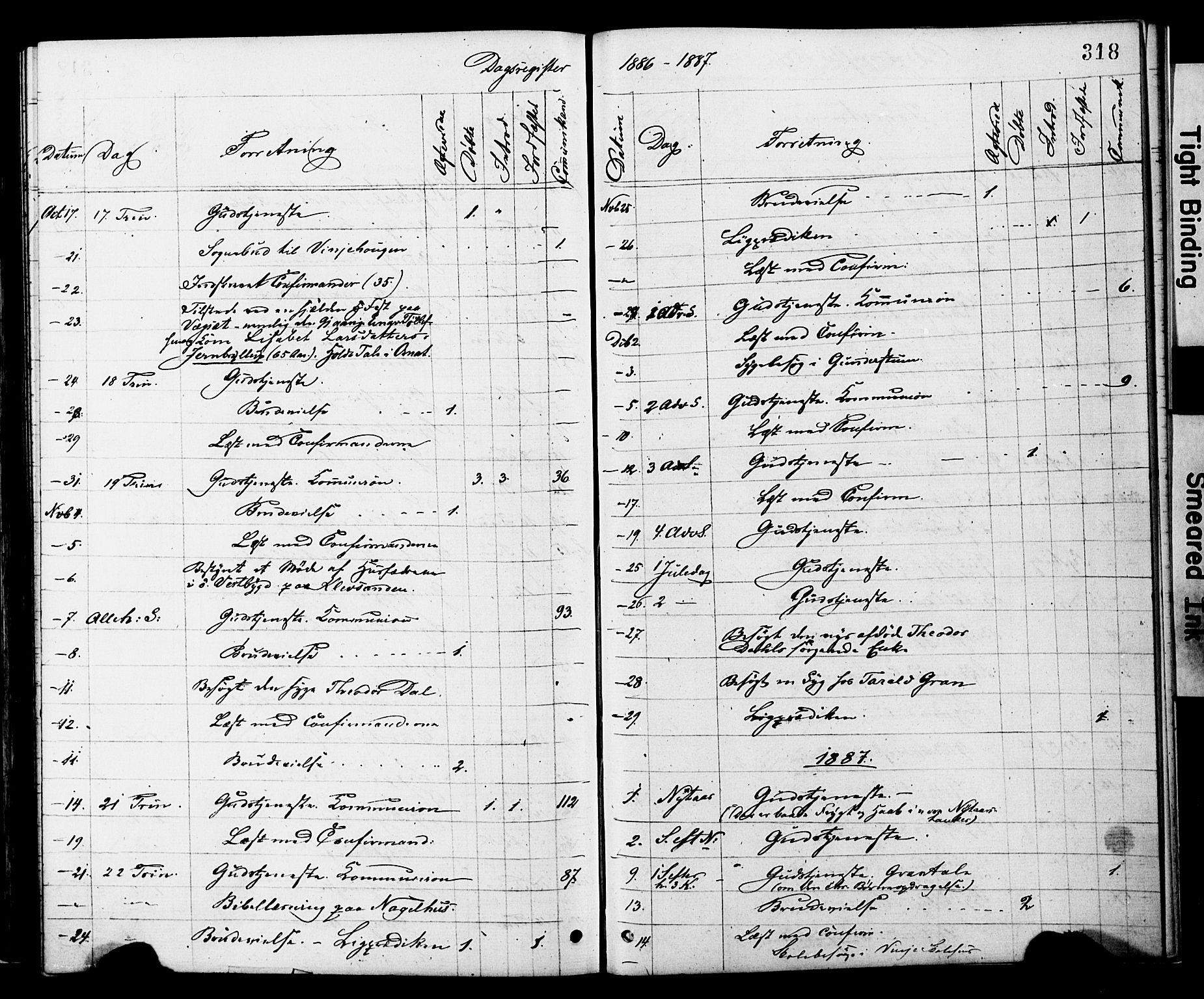 SAT, Ministerialprotokoller, klokkerbøker og fødselsregistre - Nord-Trøndelag, 749/L0473: Ministerialbok nr. 749A07, 1873-1887, s. 318