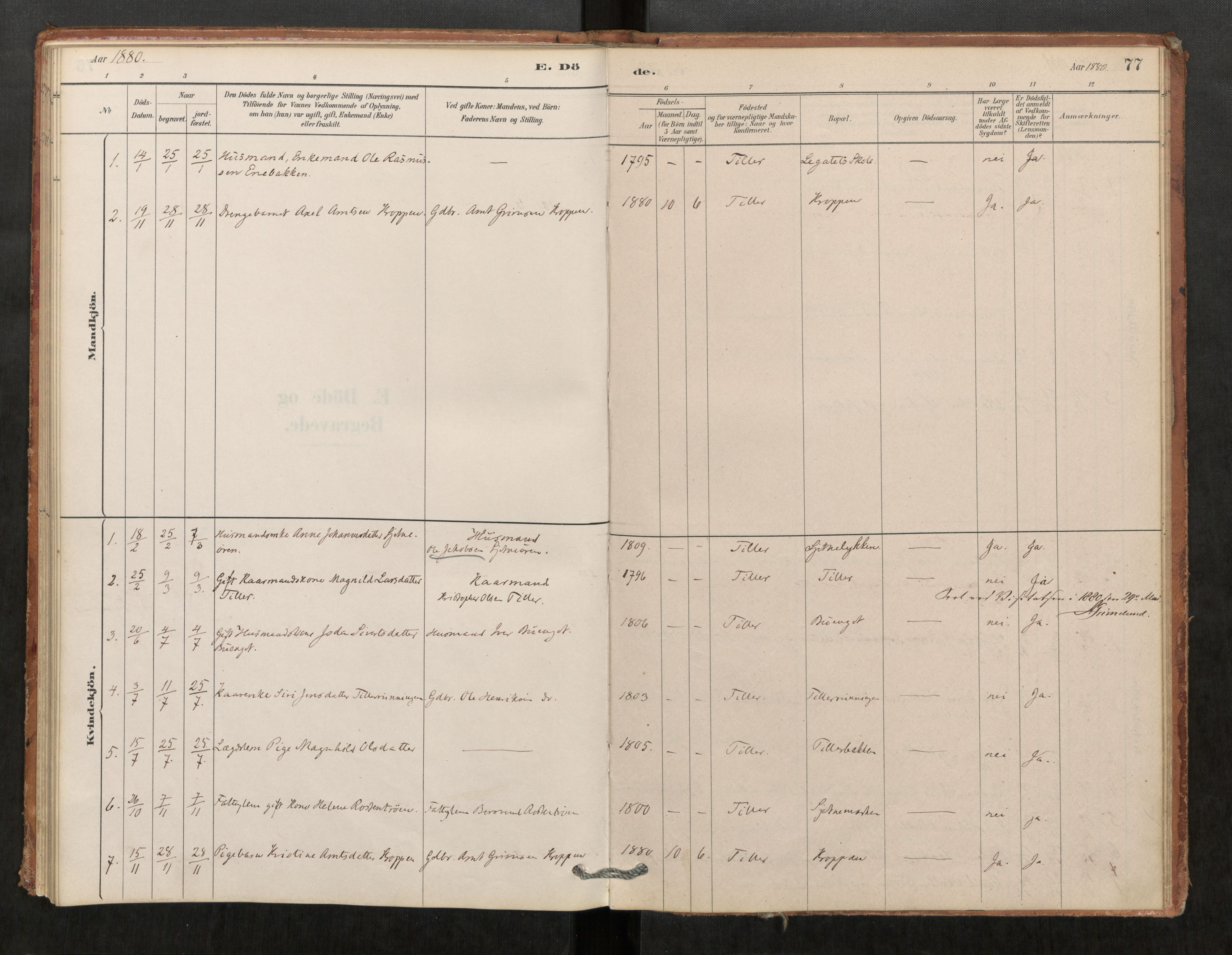 SAT, Klæbu sokneprestkontor, Ministerialbok nr. 1, 1880-1900, s. 77