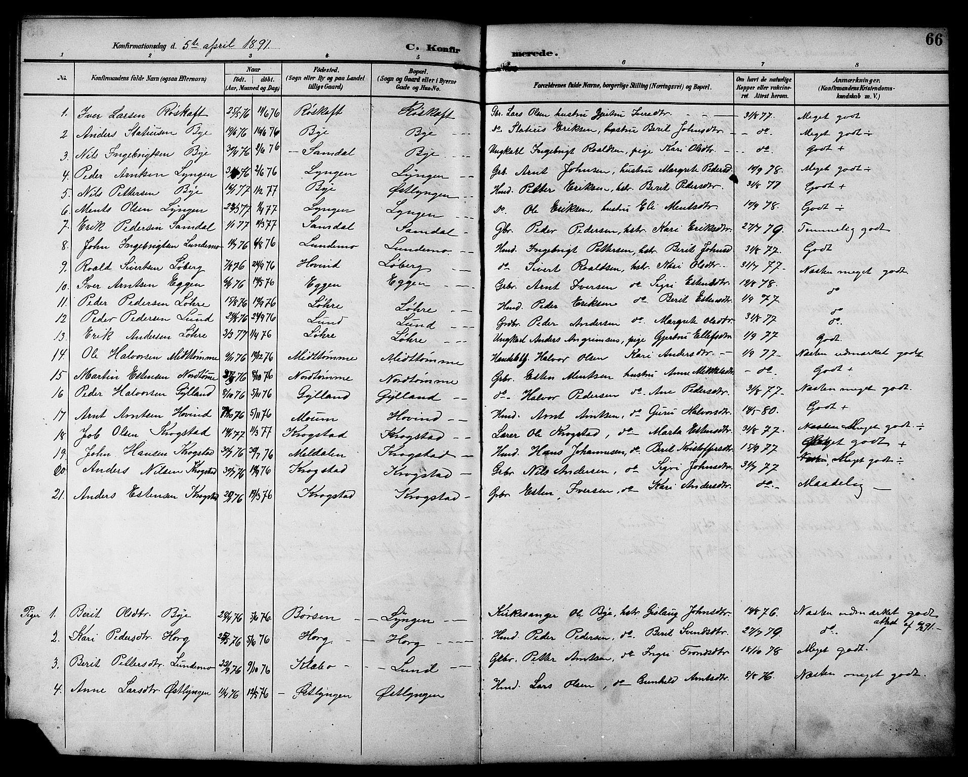 SAT, Ministerialprotokoller, klokkerbøker og fødselsregistre - Sør-Trøndelag, 692/L1111: Klokkerbok nr. 692C06, 1890-1904, s. 66