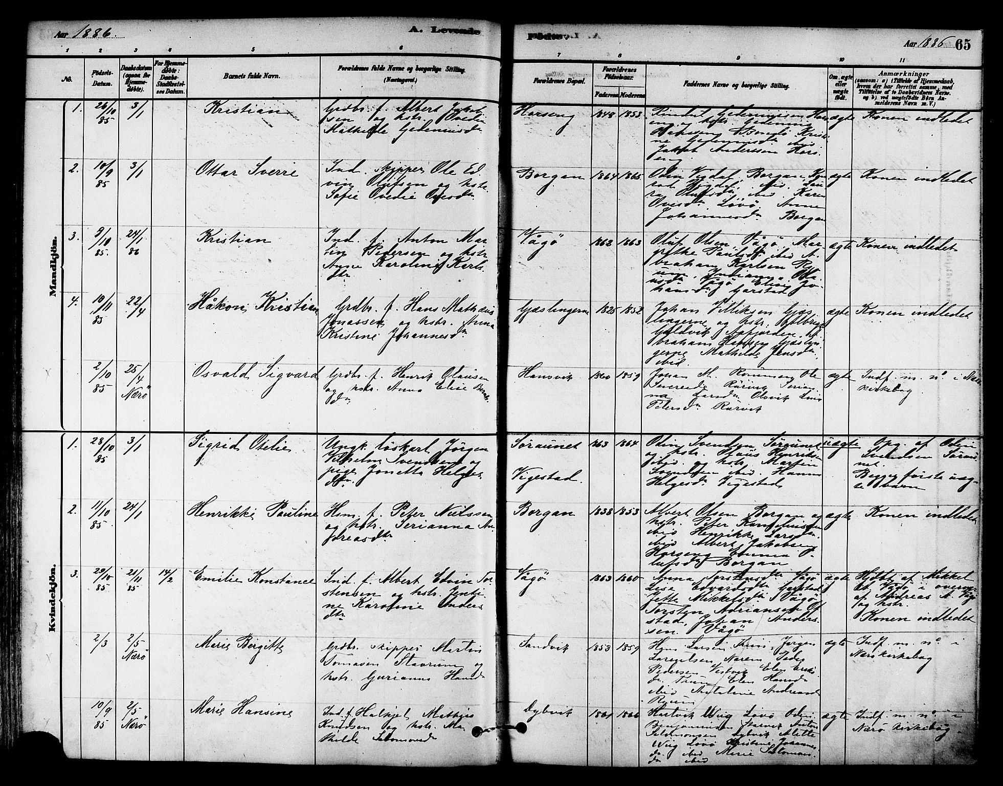 SAT, Ministerialprotokoller, klokkerbøker og fødselsregistre - Nord-Trøndelag, 786/L0686: Ministerialbok nr. 786A02, 1880-1887, s. 65