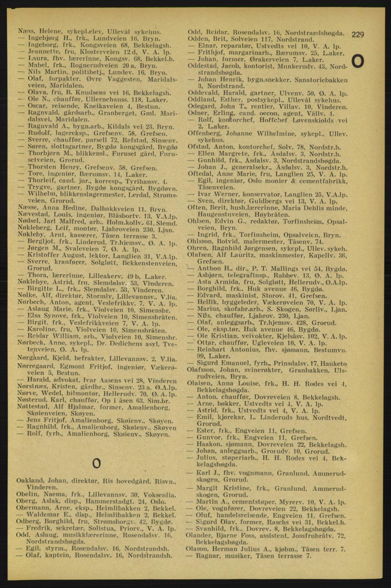 PUBL, Aker adressebok/adressekalender, 1934-1935, s. 229
