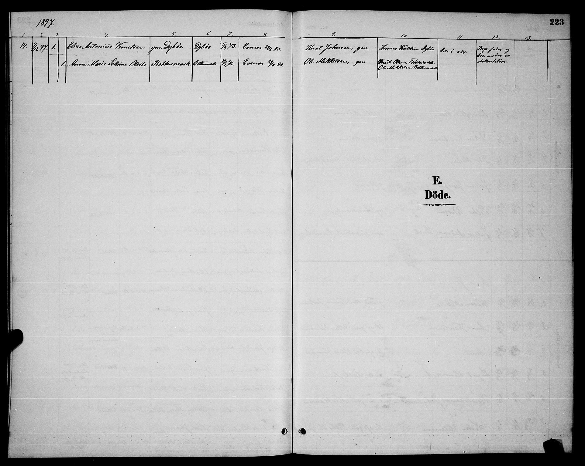SAT, Ministerialprotokoller, klokkerbøker og fødselsregistre - Nordland, 863/L0914: Klokkerbok nr. 863C04, 1886-1897, s. 223