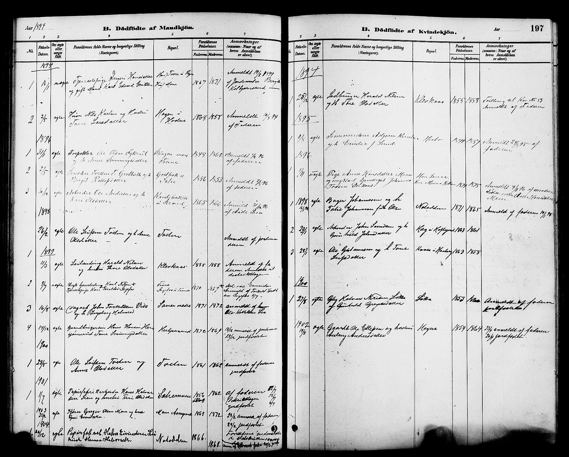 SAKO, Heddal kirkebøker, G/Ga/L0002: Klokkerbok nr. I 2, 1879-1908, s. 197