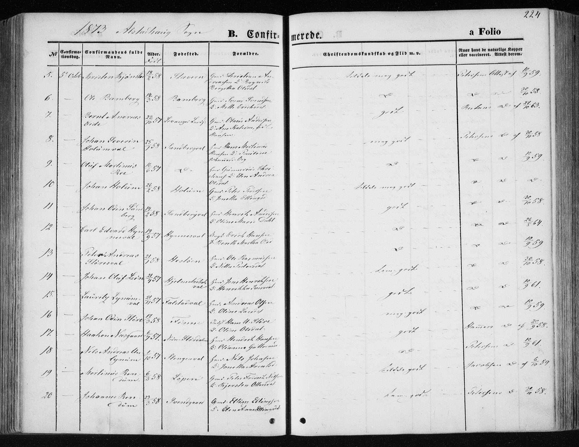 SAT, Ministerialprotokoller, klokkerbøker og fødselsregistre - Nord-Trøndelag, 717/L0157: Ministerialbok nr. 717A08 /1, 1863-1877, s. 224