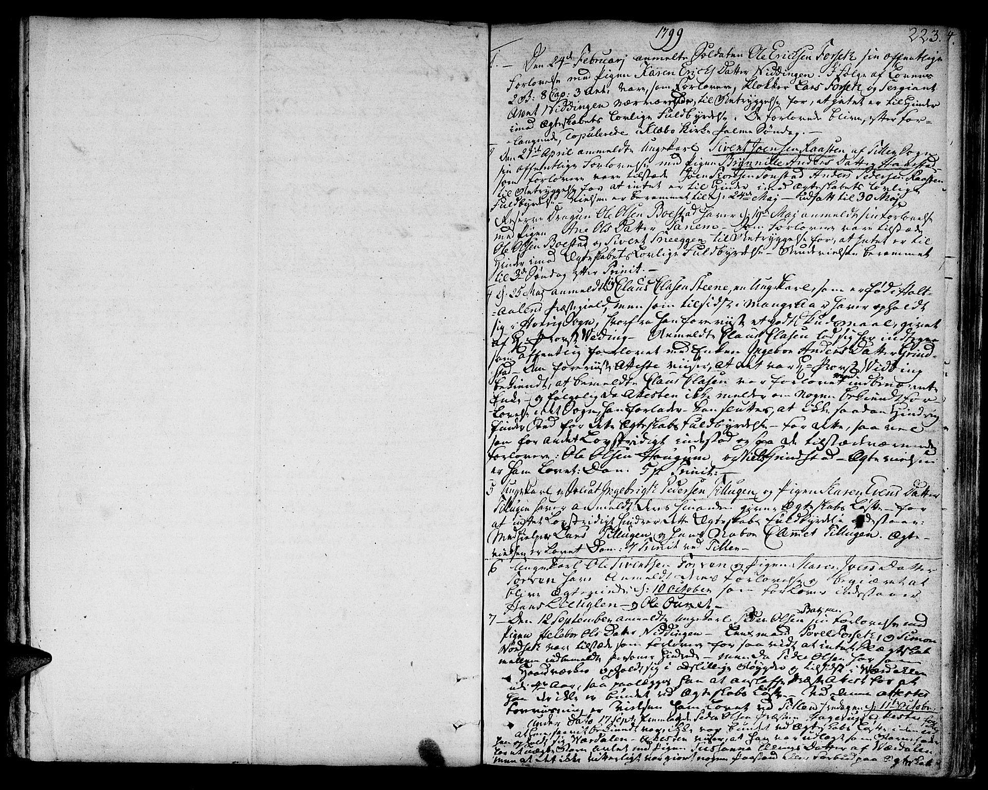 SAT, Ministerialprotokoller, klokkerbøker og fødselsregistre - Sør-Trøndelag, 618/L0438: Ministerialbok nr. 618A03, 1783-1815, s. 223
