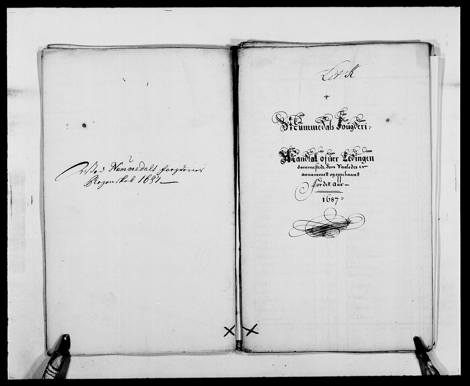 RA, Rentekammeret inntil 1814, Reviderte regnskaper, Fogderegnskap, R64/L4422: Fogderegnskap Namdal, 1687-1689, s. 56