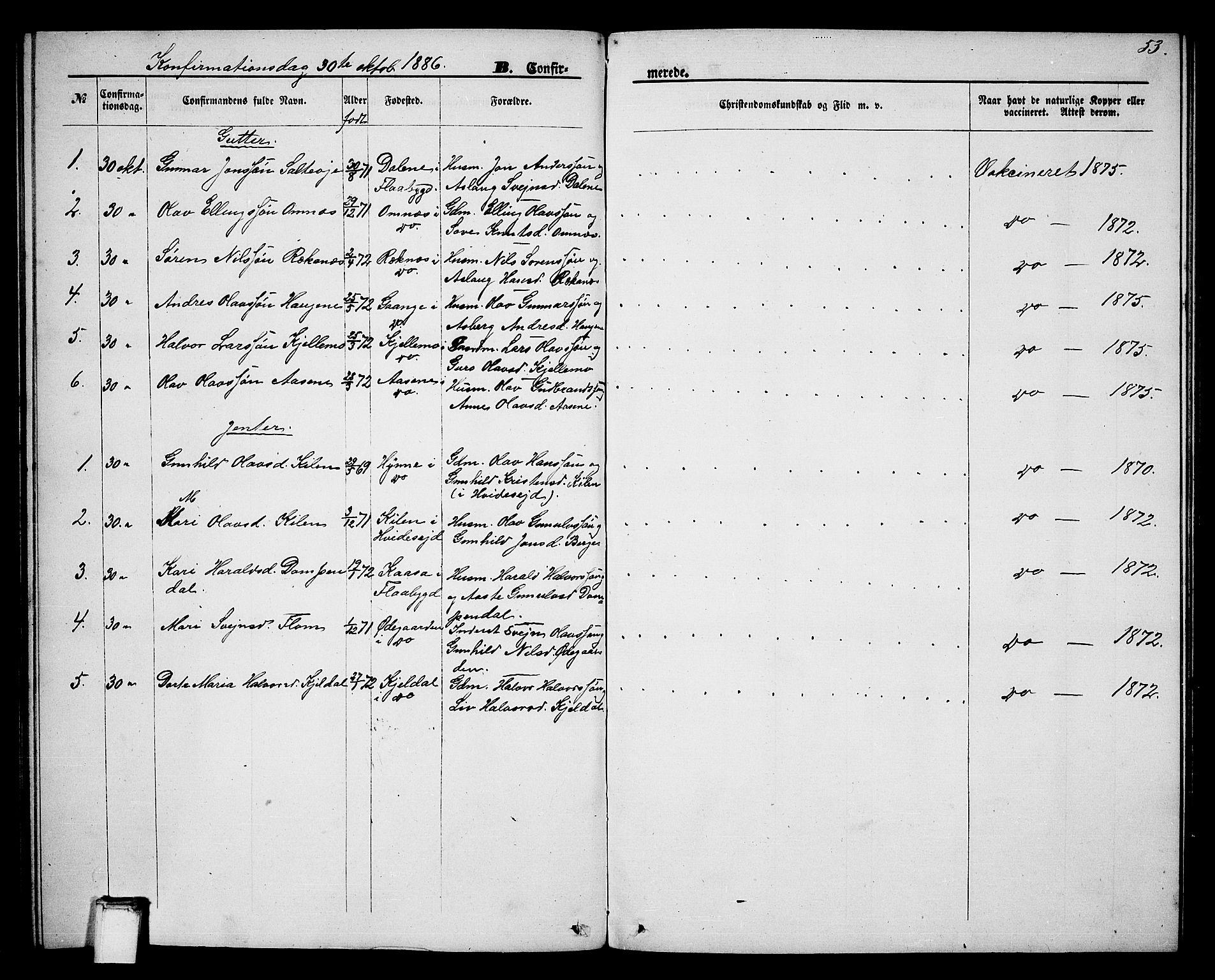 SAKO, Lunde kirkebøker, G/Gb/L0001: Klokkerbok nr. II 1, 1866-1887, s. 53