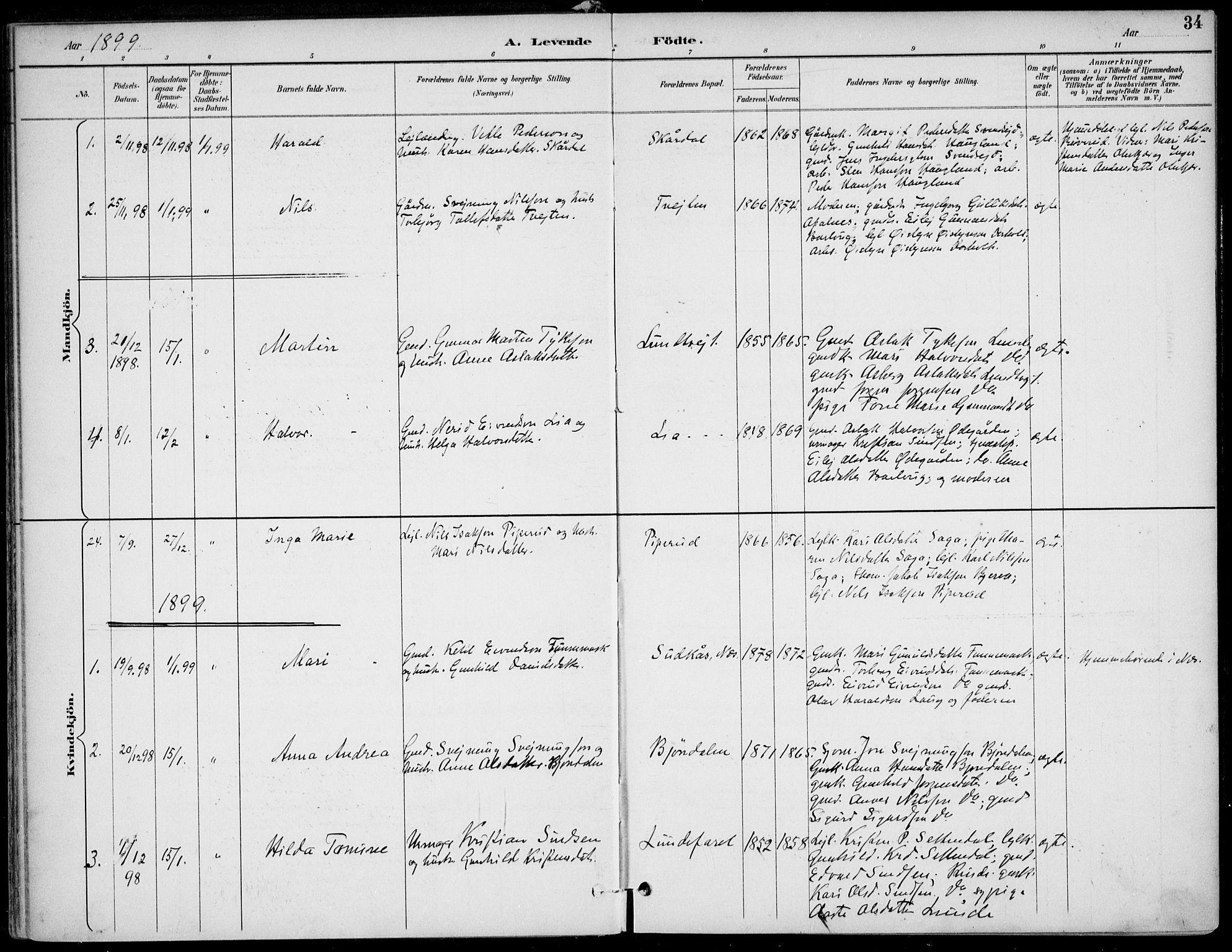 SAKO, Lunde kirkebøker, F/Fa/L0003: Ministerialbok nr. I 3, 1893-1902, s. 34