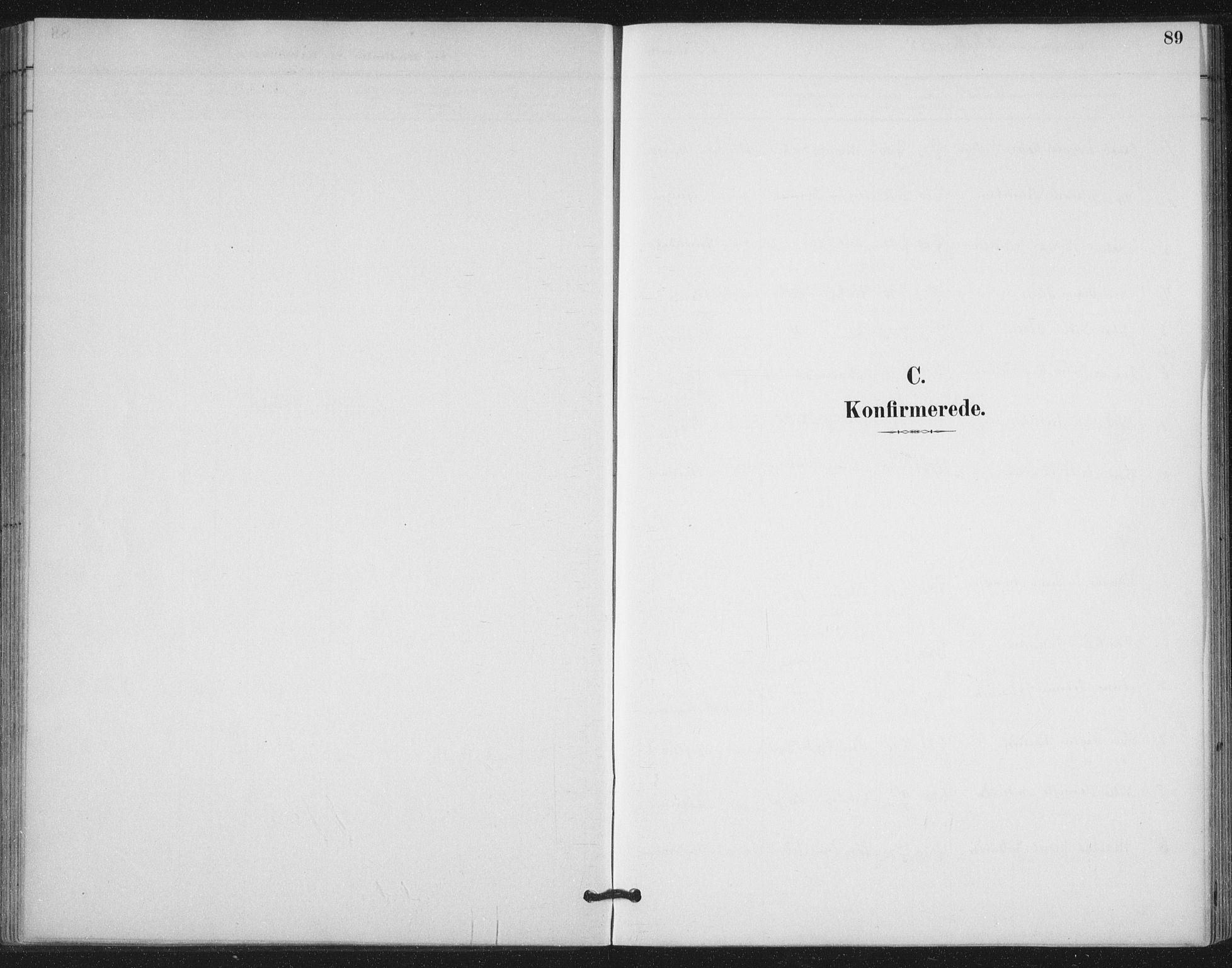 SAT, Ministerialprotokoller, klokkerbøker og fødselsregistre - Nord-Trøndelag, 772/L0603: Ministerialbok nr. 772A01, 1885-1912, s. 89