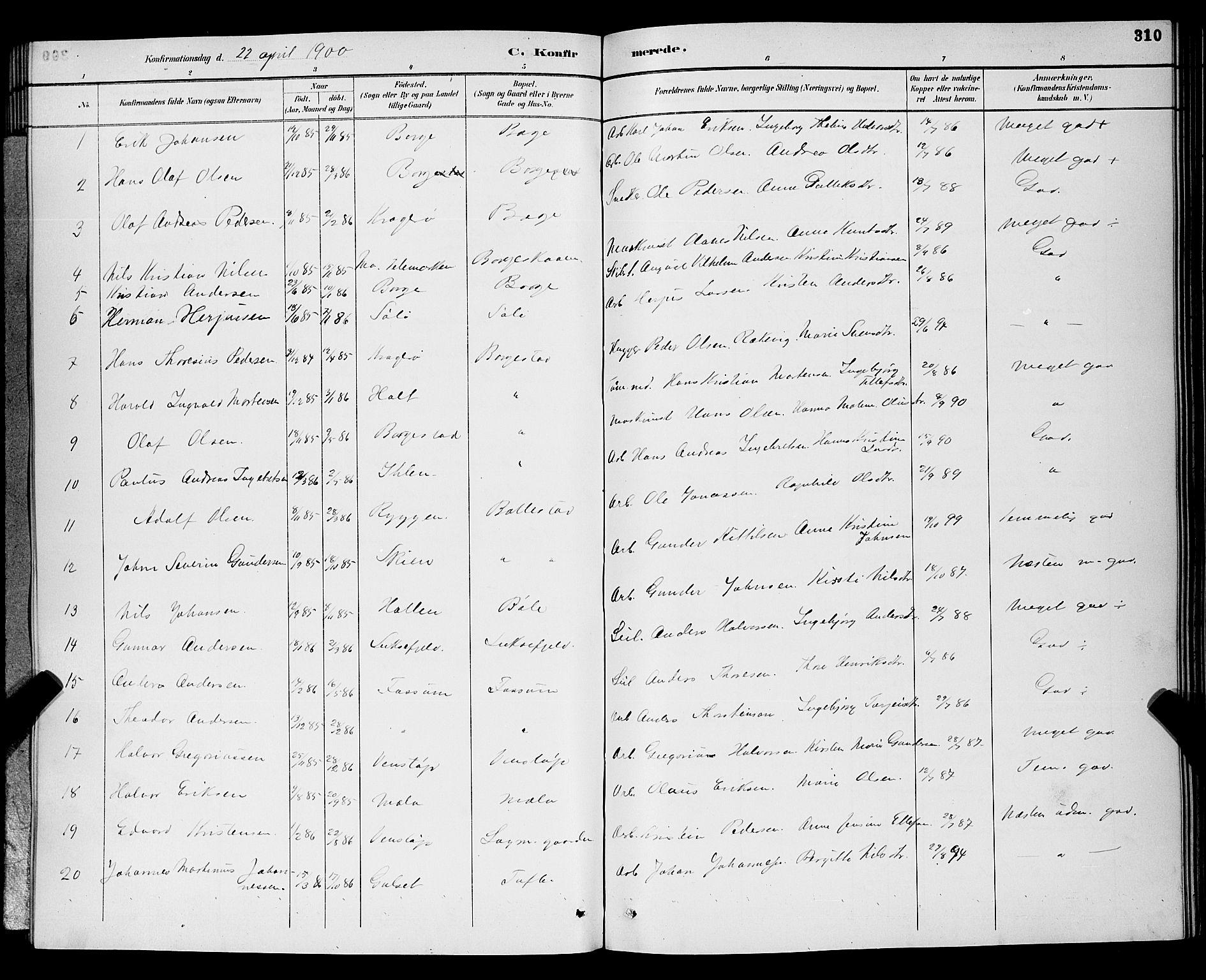 SAKO, Gjerpen kirkebøker, G/Ga/L0002: Klokkerbok nr. I 2, 1883-1900, s. 310