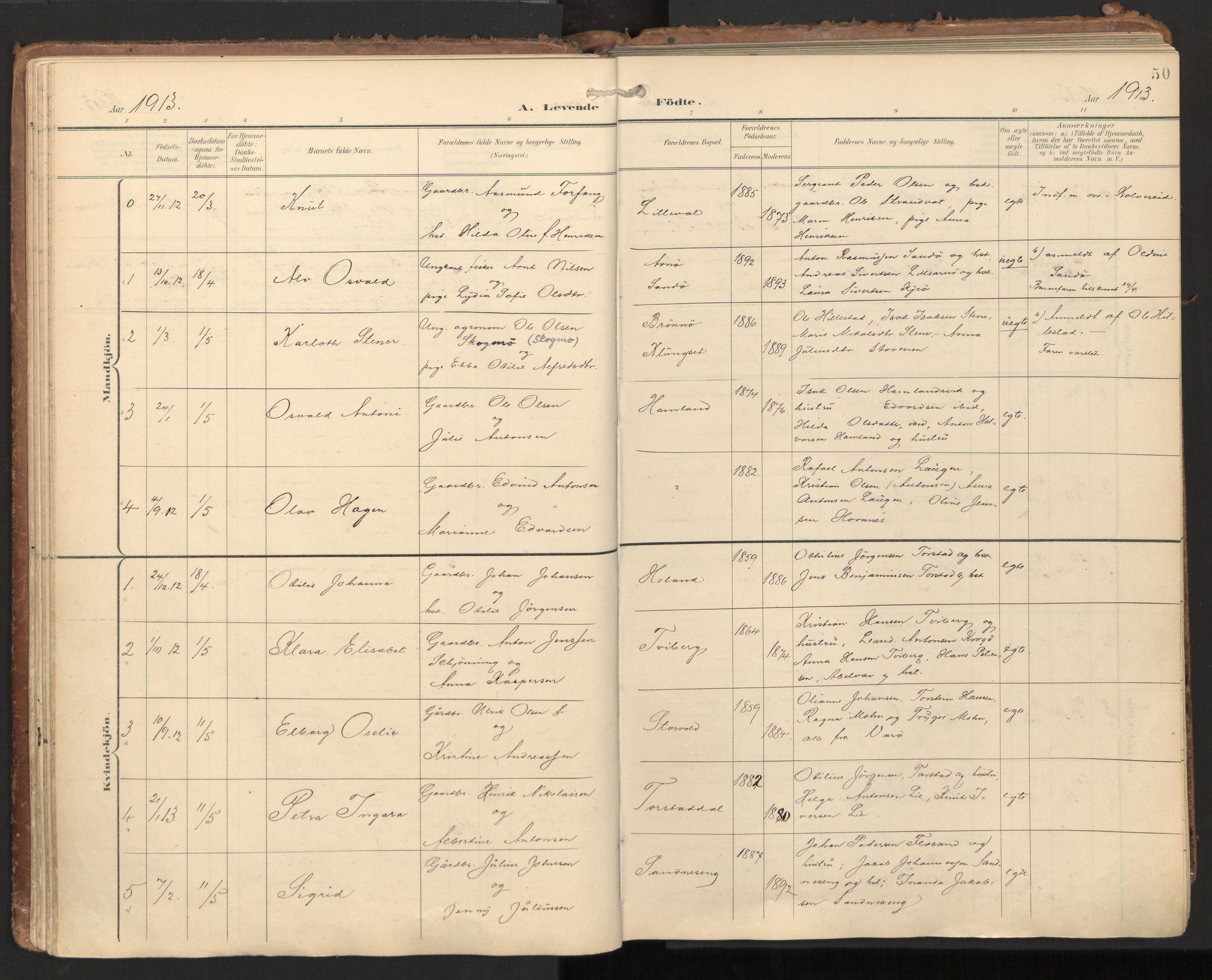 SAT, Ministerialprotokoller, klokkerbøker og fødselsregistre - Nord-Trøndelag, 784/L0677: Ministerialbok nr. 784A12, 1900-1920, s. 50