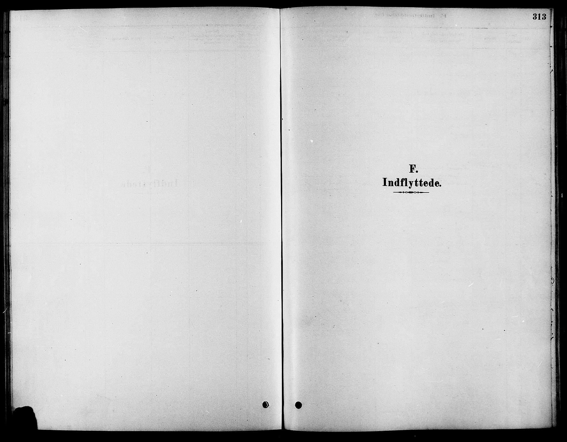 SAH, Fåberg prestekontor, Ministerialbok nr. 8, 1879-1898, s. 313
