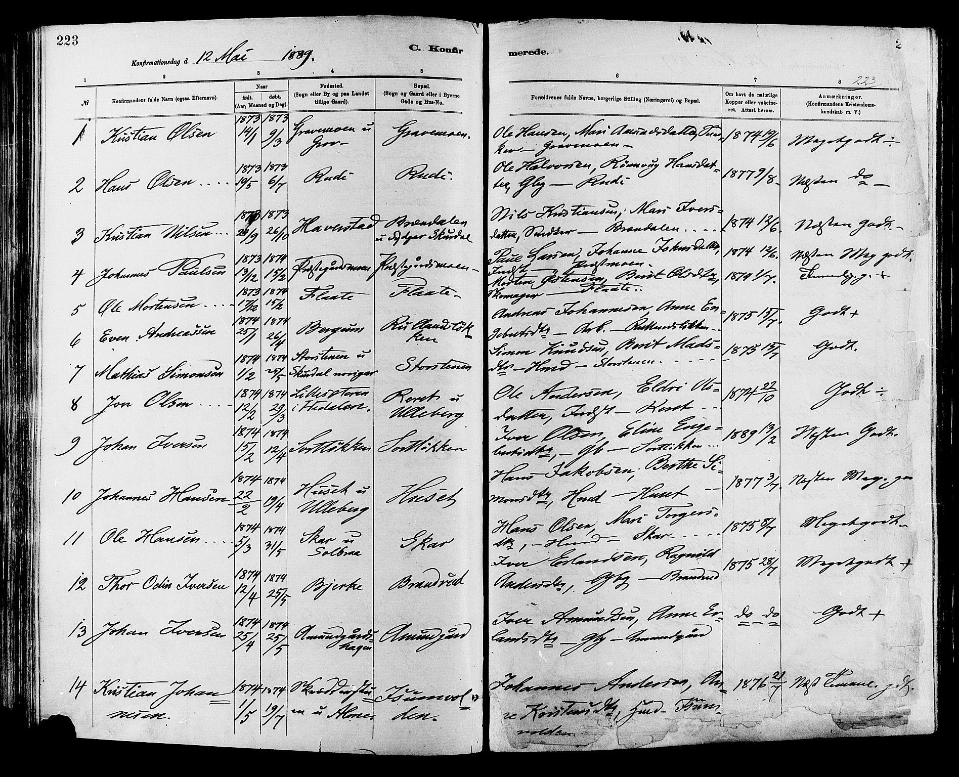 SAH, Sør-Fron prestekontor, H/Ha/Haa/L0003: Ministerialbok nr. 3, 1881-1897, s. 223