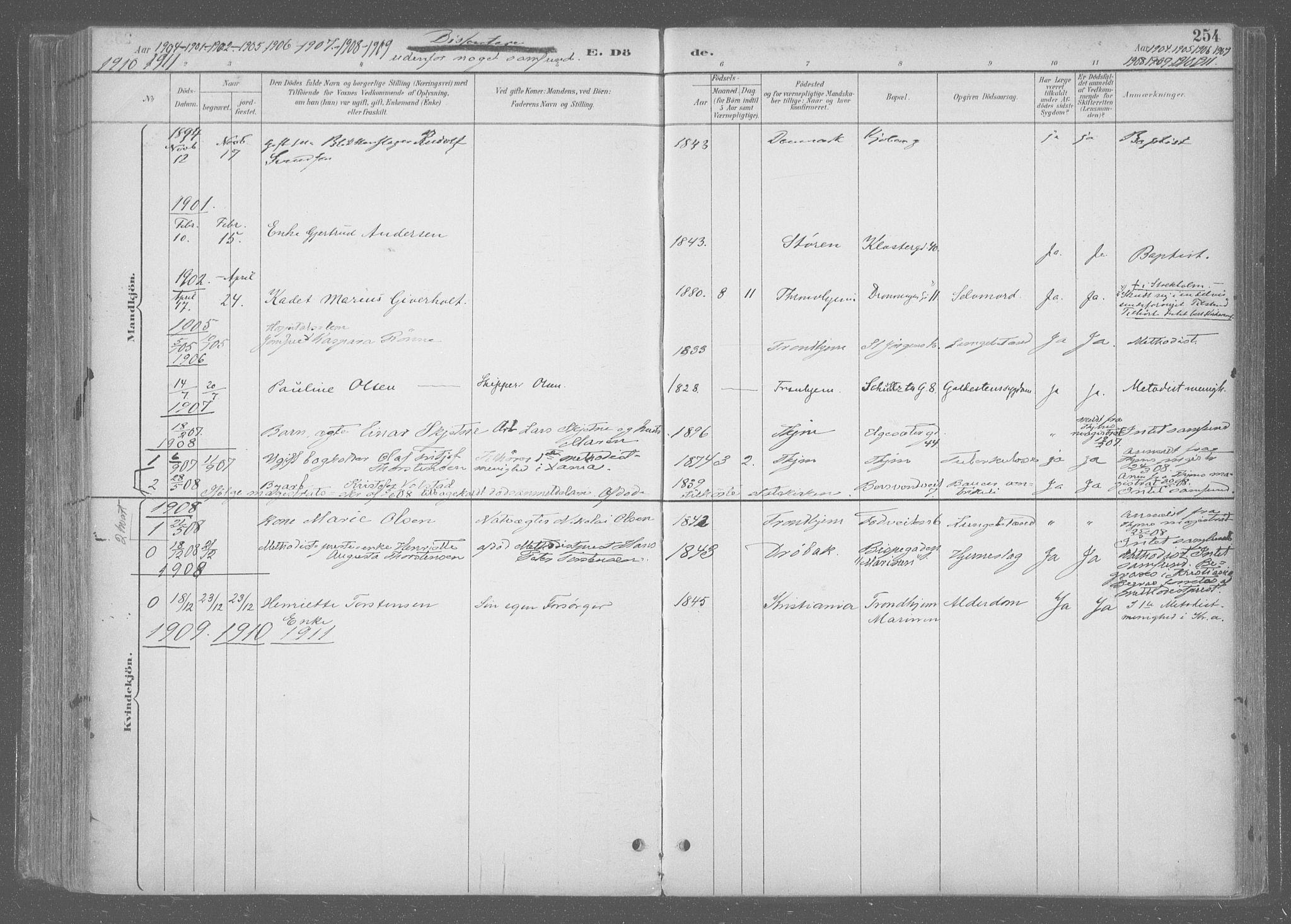 SAT, Ministerialprotokoller, klokkerbøker og fødselsregistre - Sør-Trøndelag, 601/L0064: Ministerialbok nr. 601A31, 1891-1911, s. 254