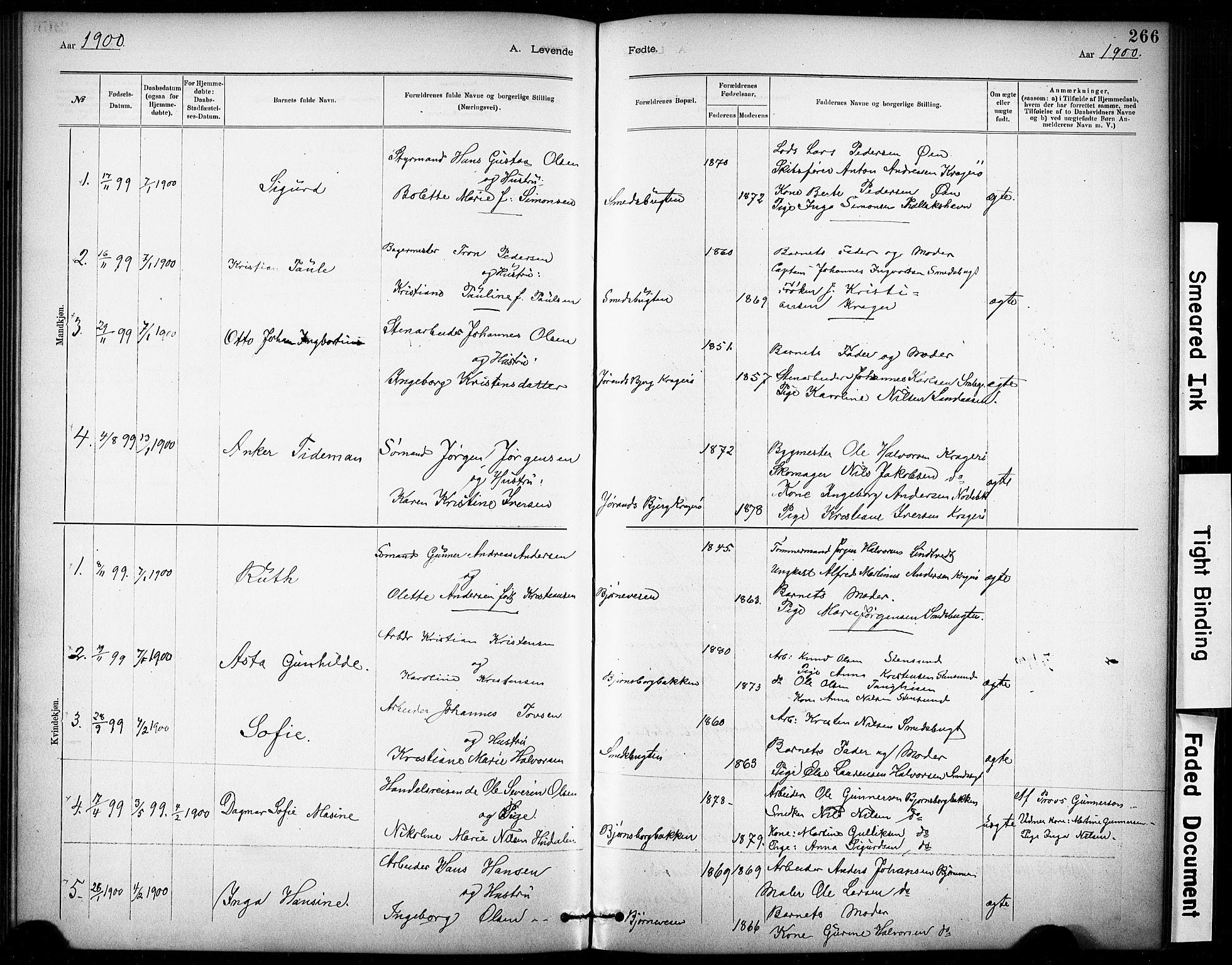 SAKO, Kragerø kirkebøker, G/Ga/L0007: Klokkerbok nr. 7, 1881-1927, s. 266