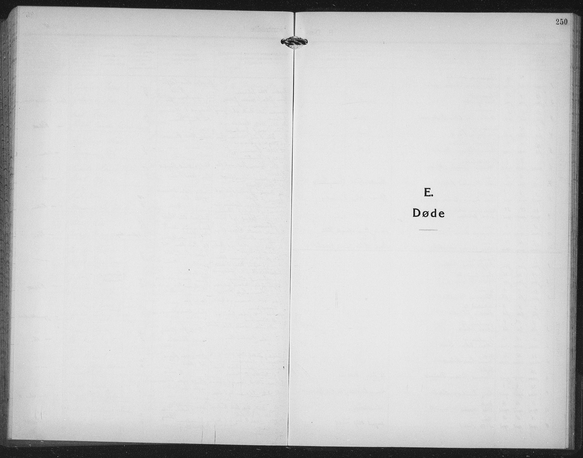 SAT, Ministerialprotokoller, klokkerbøker og fødselsregistre - Møre og Romsdal, 558/L0704: Klokkerbok nr. 558C05, 1921-1942, s. 250