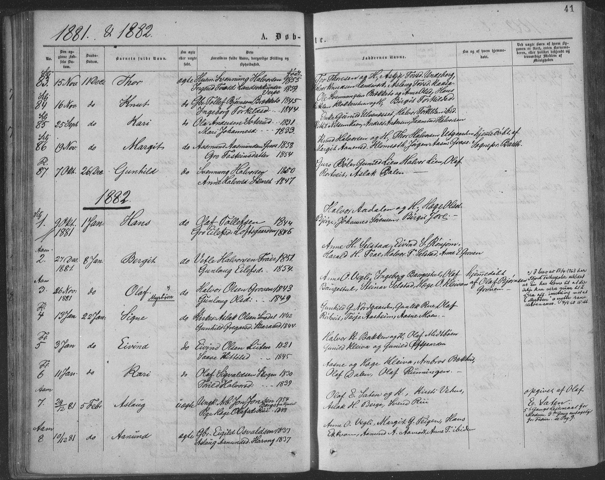 SAKO, Seljord kirkebøker, F/Fa/L0014: Ministerialbok nr. I 14, 1877-1886, s. 41