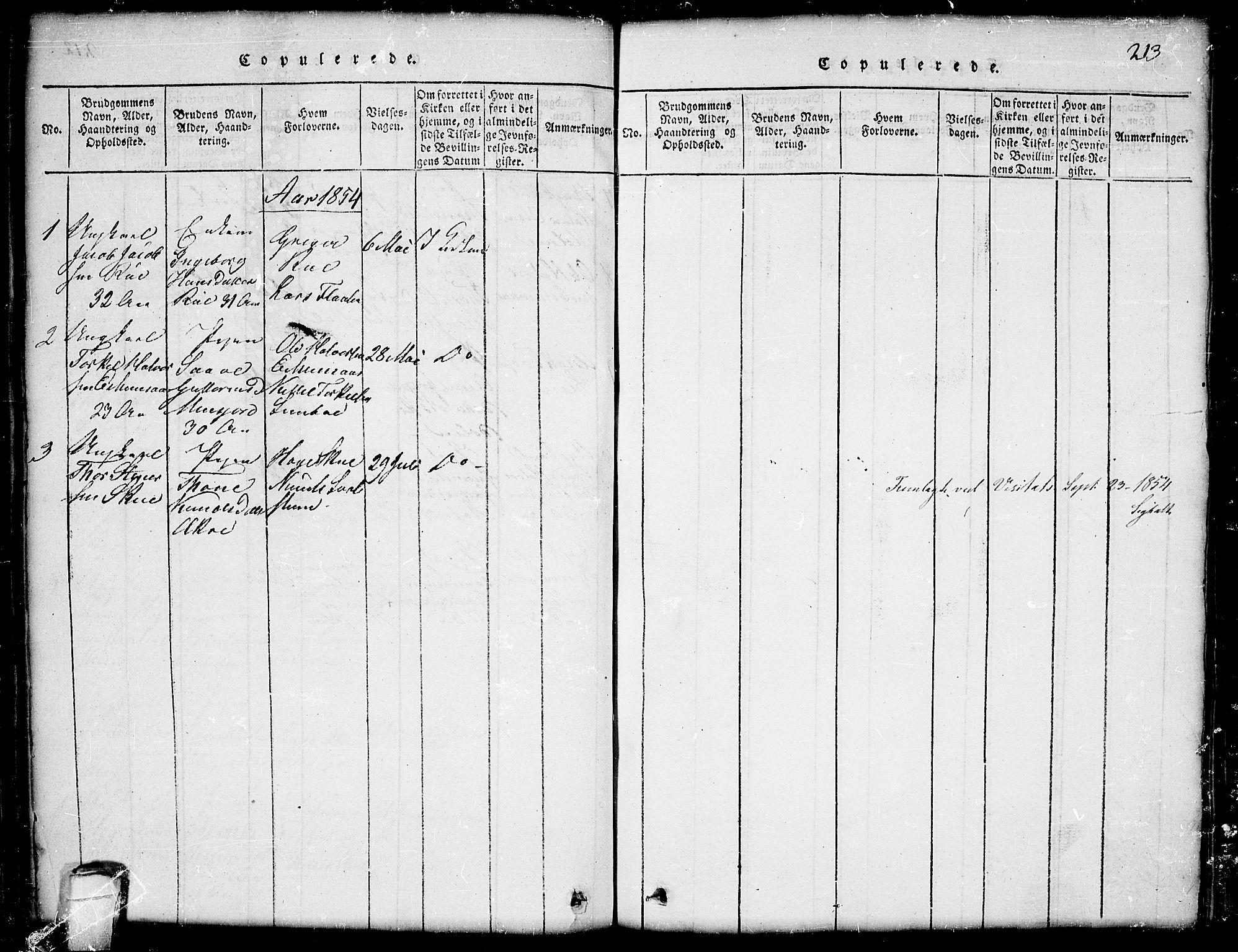 SAKO, Seljord kirkebøker, G/Gb/L0002: Klokkerbok nr. II 2, 1815-1854, s. 213