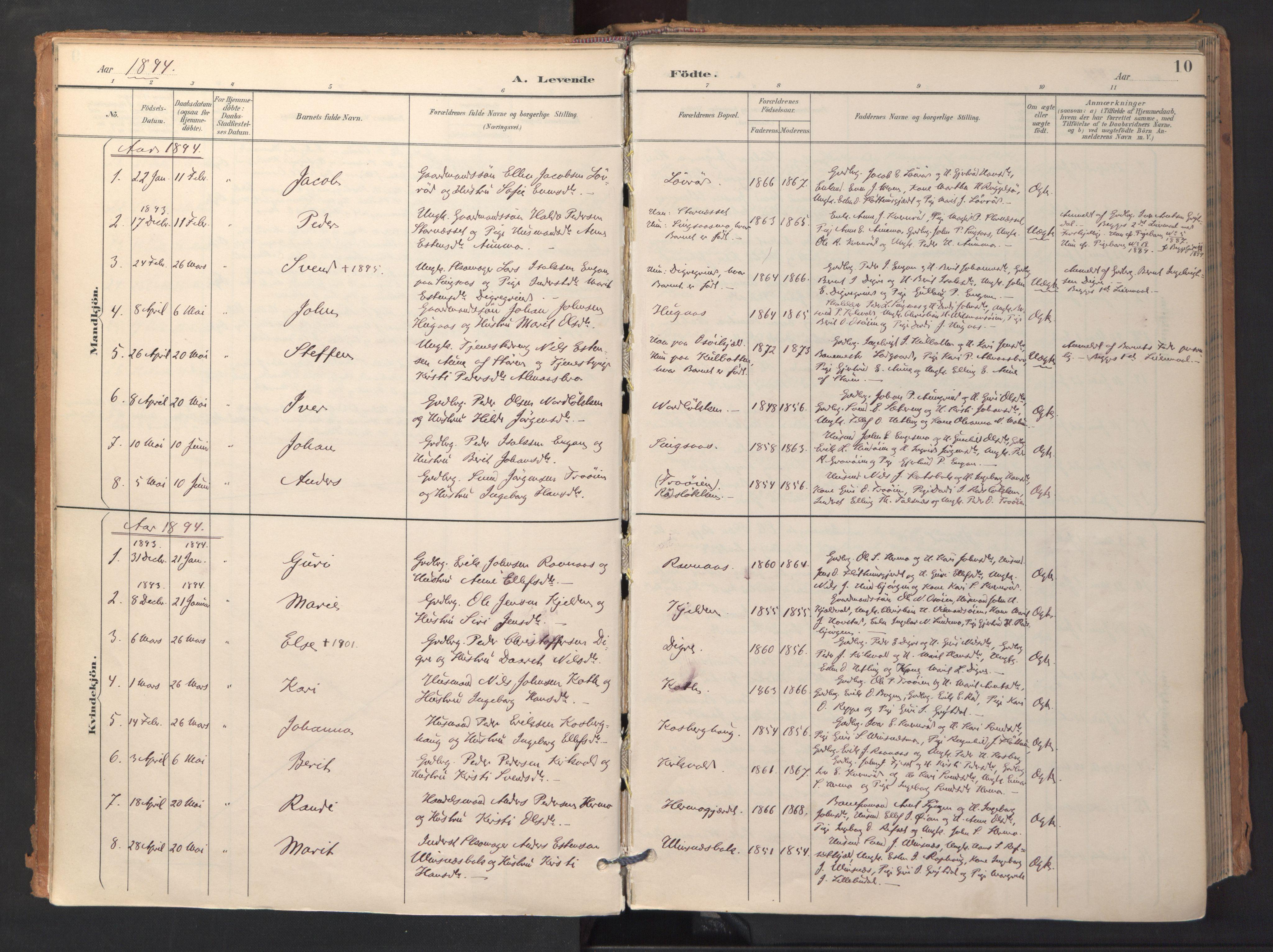 SAT, Ministerialprotokoller, klokkerbøker og fødselsregistre - Sør-Trøndelag, 688/L1025: Ministerialbok nr. 688A02, 1891-1909, s. 10
