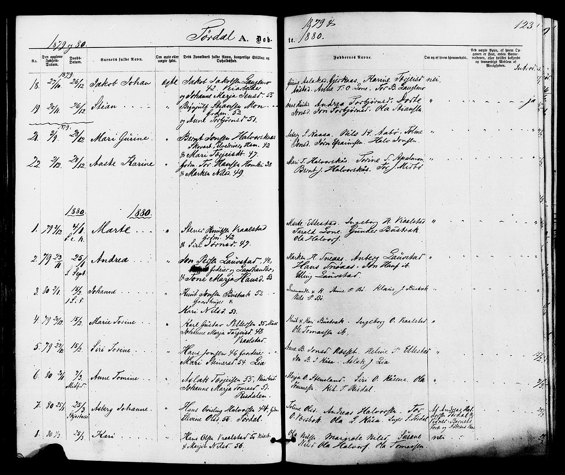 SAKO, Drangedal kirkebøker, F/Fa/L0009: Ministerialbok nr. 9 /2, 1872-1884, s. 123