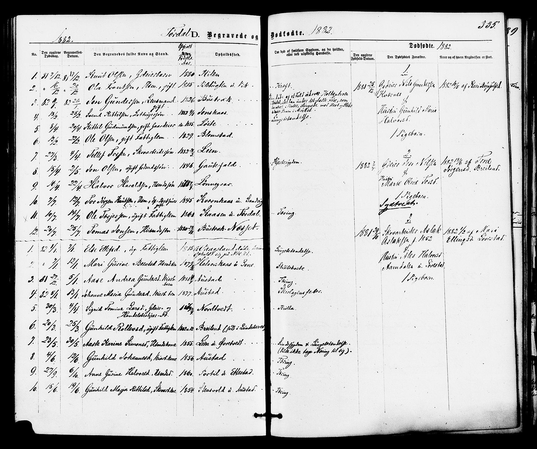 SAKO, Drangedal kirkebøker, F/Fa/L0009: Ministerialbok nr. 9 /2, 1872-1884, s. 335