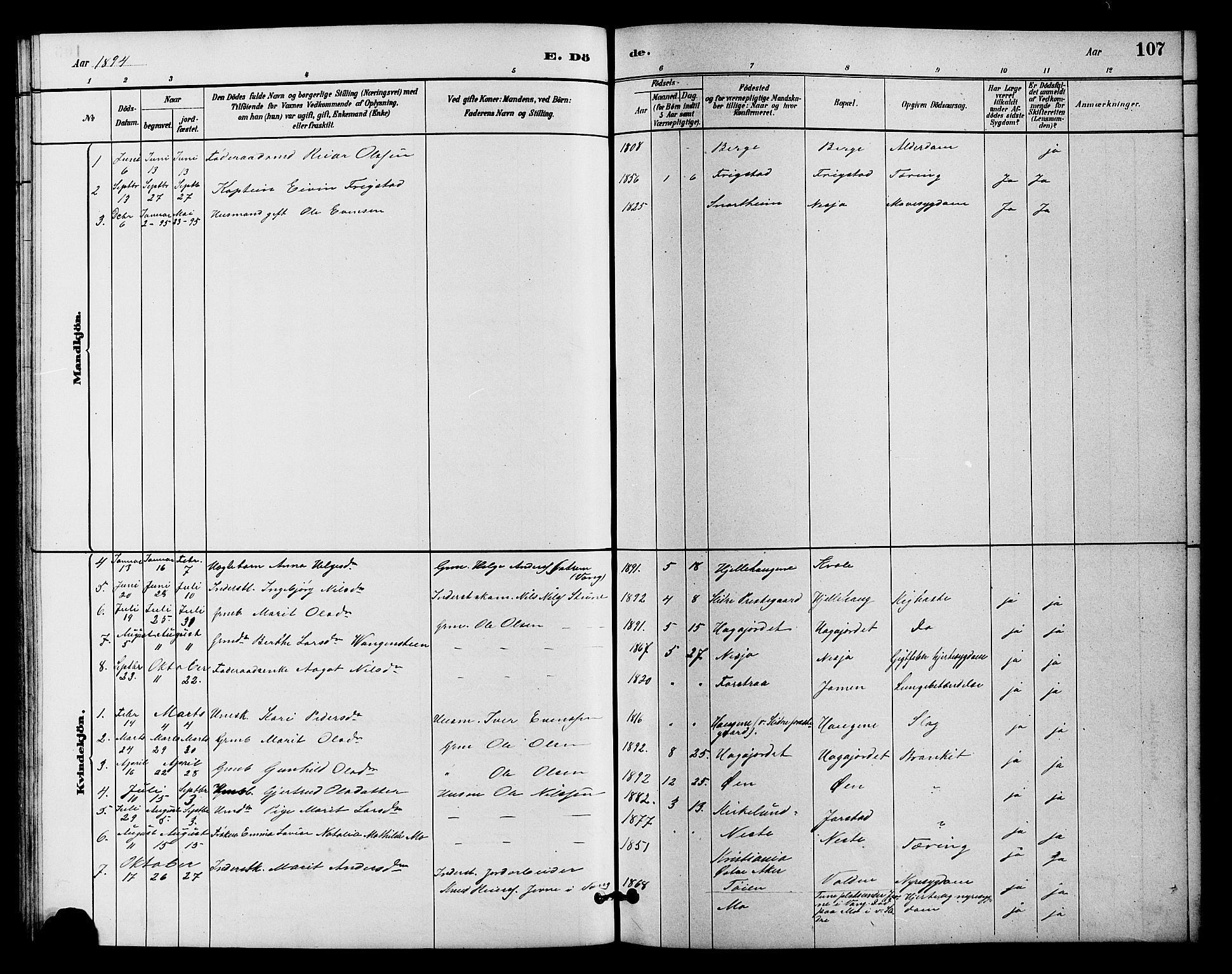 SAH, Vestre Slidre prestekontor, Klokkerbok nr. 4, 1881-1912, s. 107