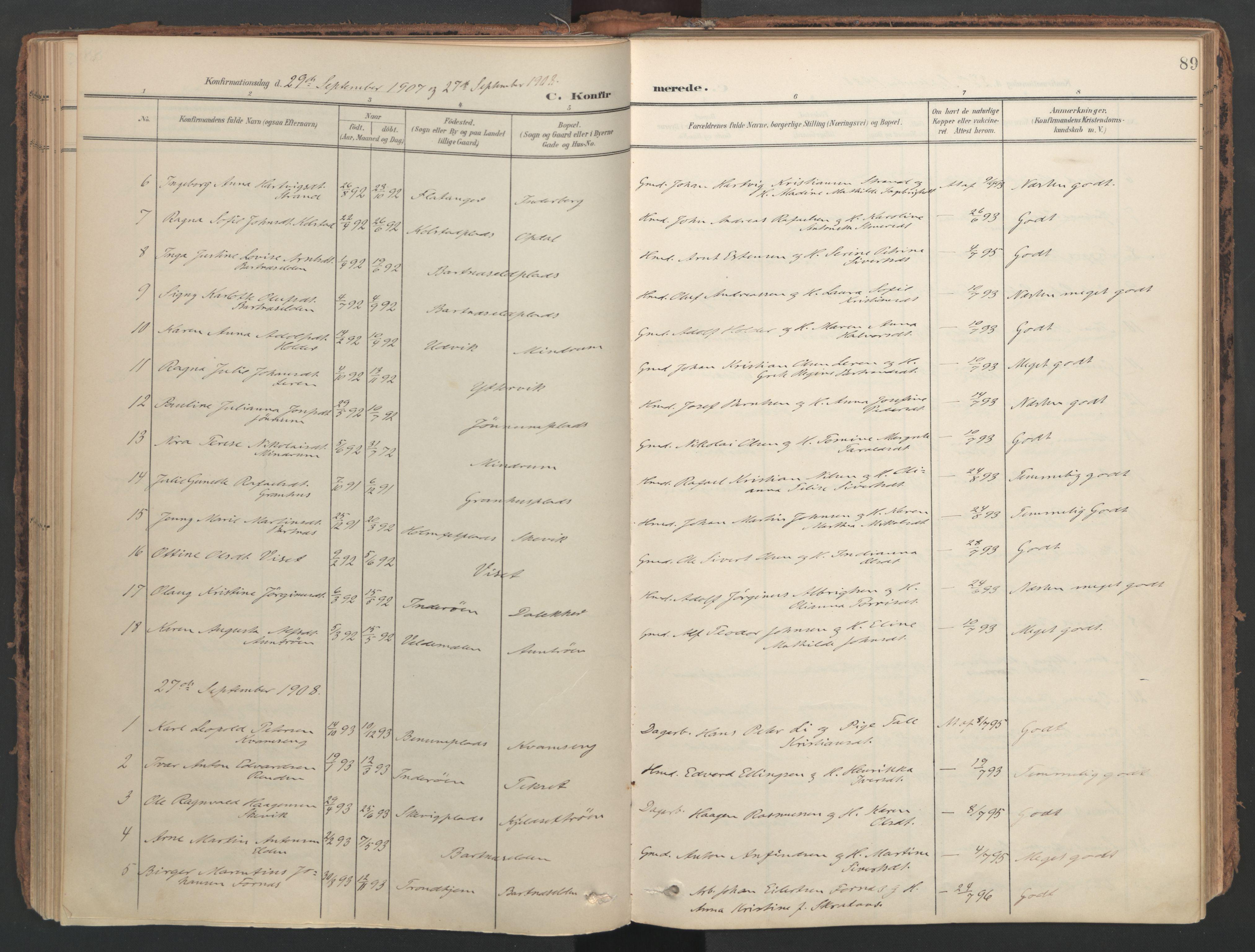 SAT, Ministerialprotokoller, klokkerbøker og fødselsregistre - Nord-Trøndelag, 741/L0397: Ministerialbok nr. 741A11, 1901-1911, s. 89